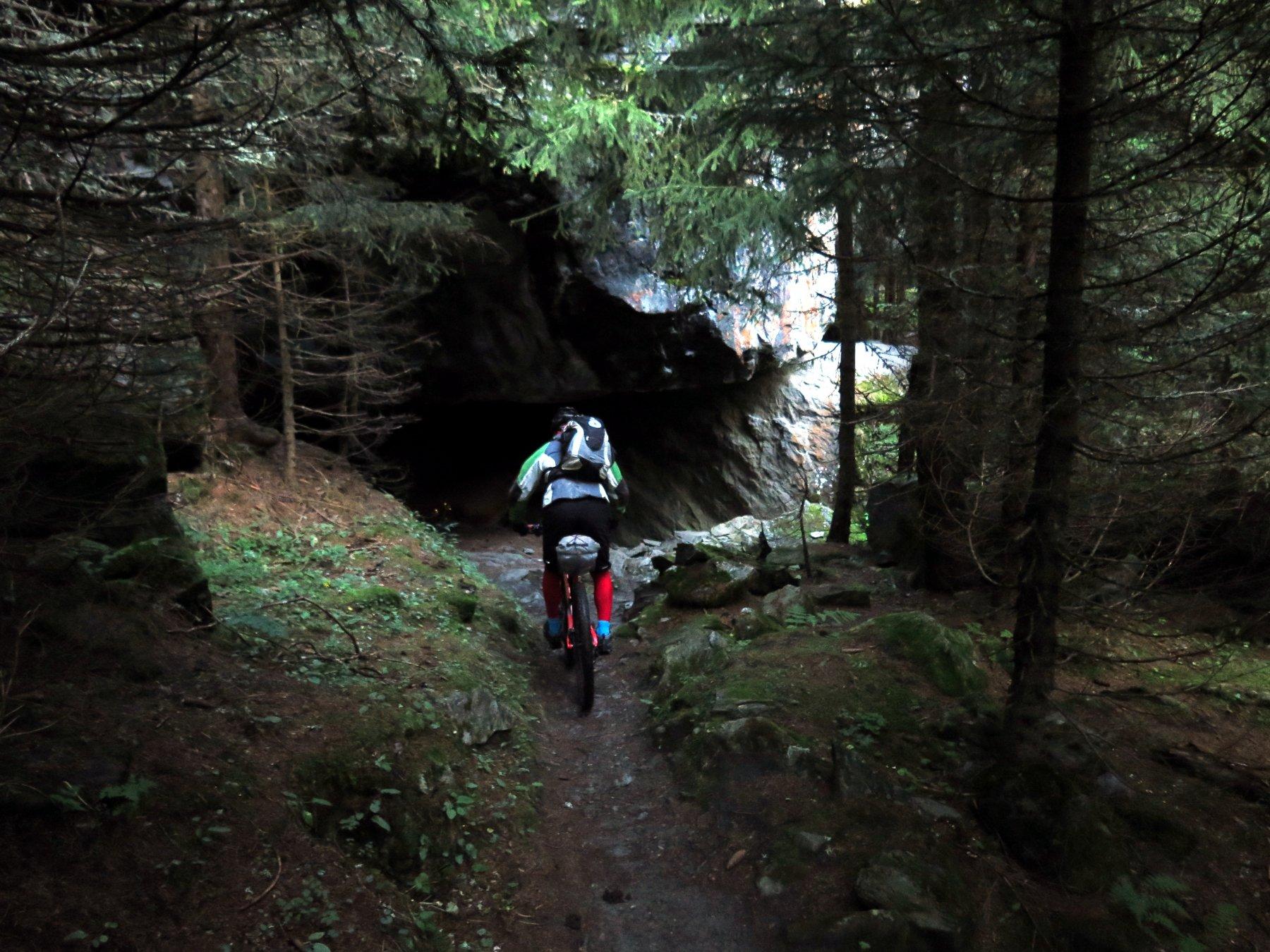 Nel bosco, vicino a Fionnay