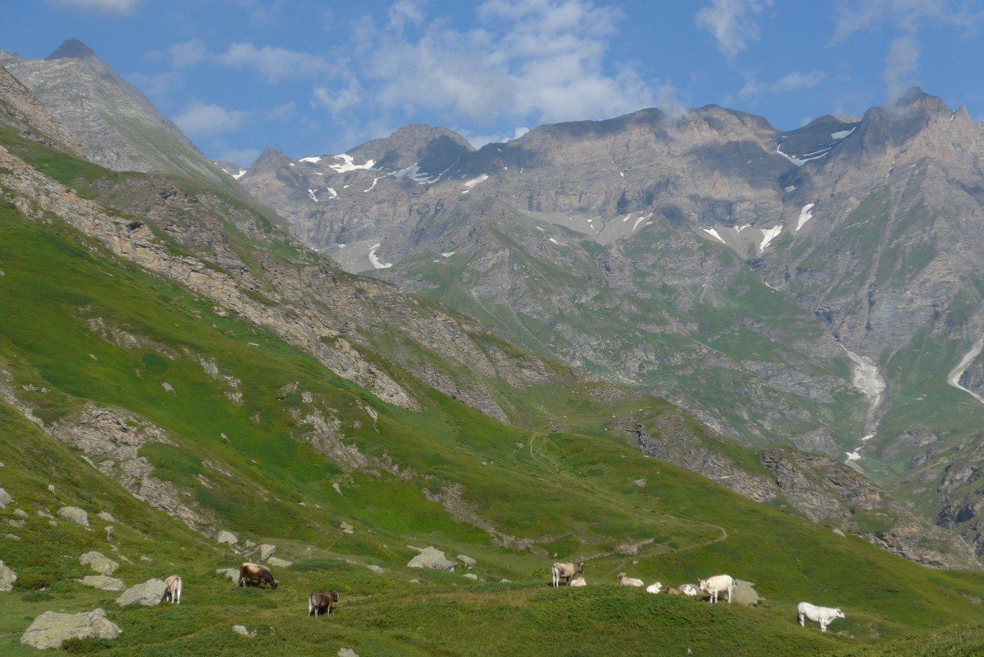 La testata della Val di Viù da sopra il lago Nero