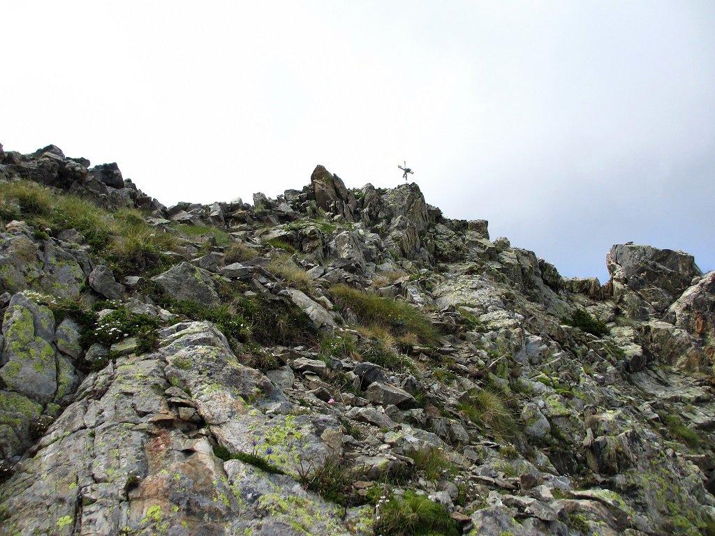 Cima monte Carbonè