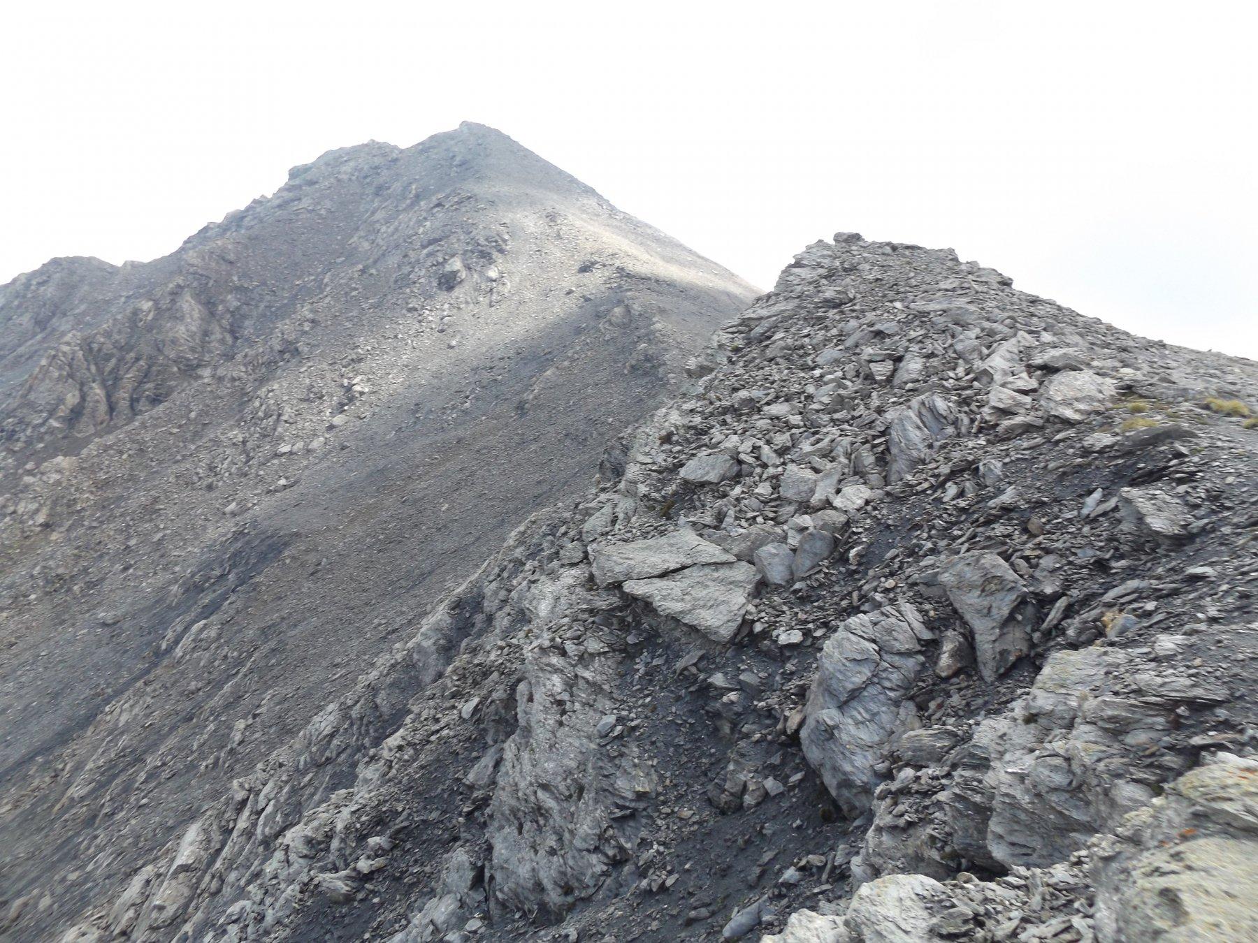 Cresta dal colletto - Monte Sotto Rognosa e Rognosa del Sestriere
