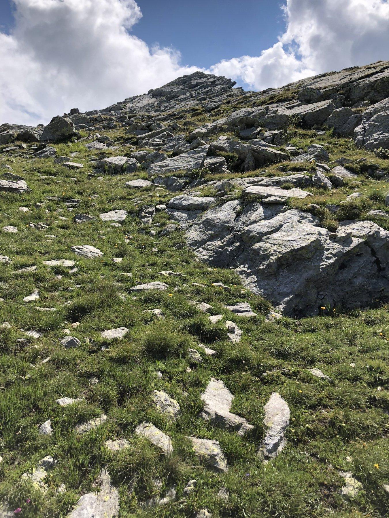 Dopo il colle gli ometti conducono lungo pendii erbosi