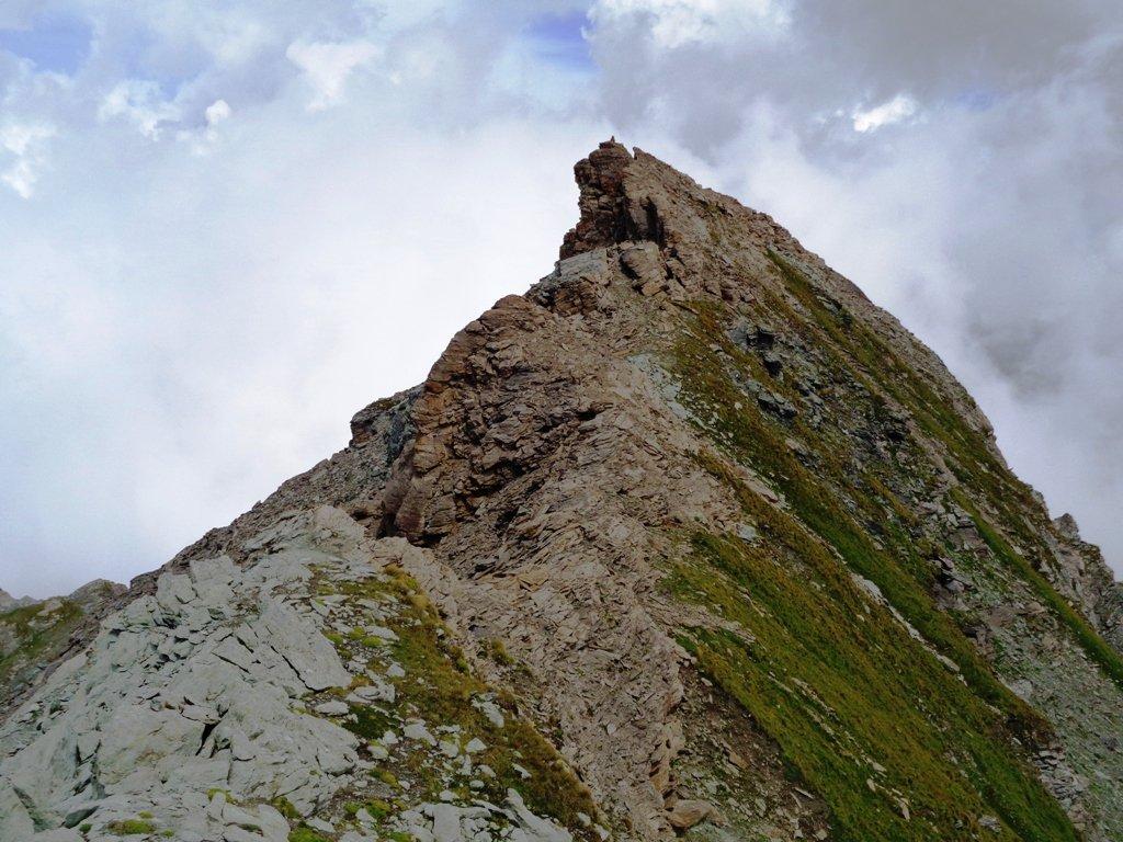 Cresta del fortino