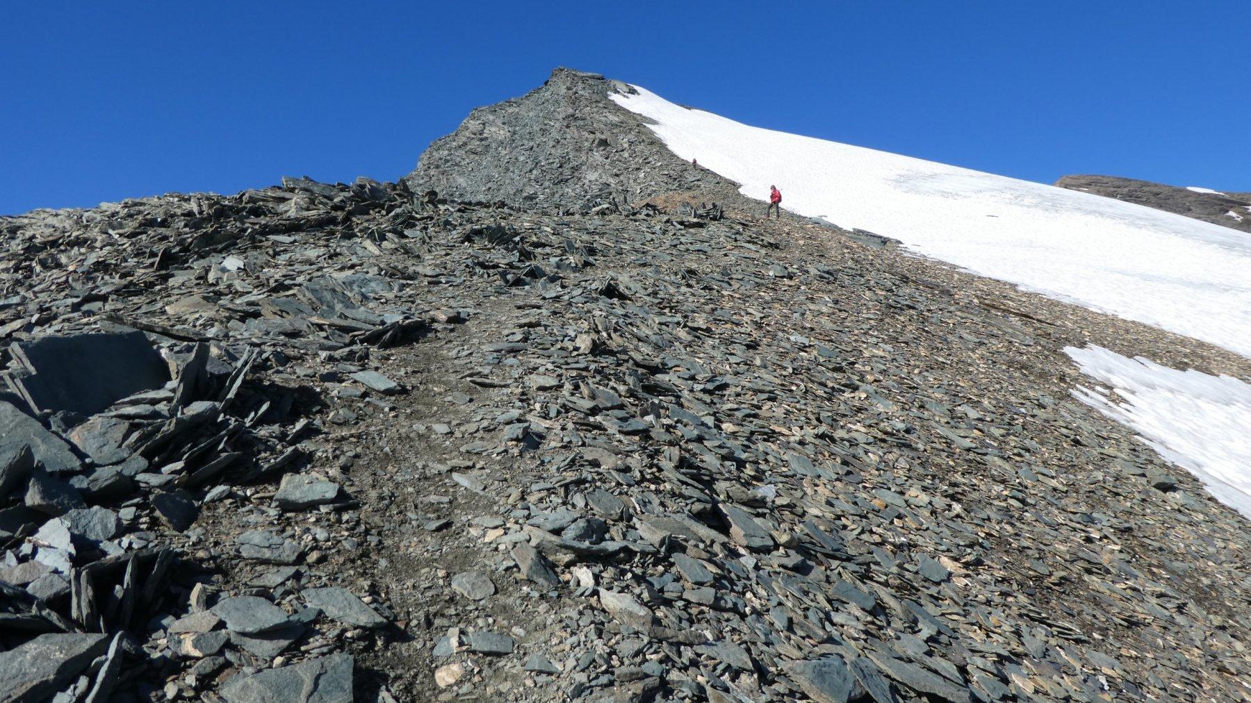 la facile cresta finale che porta in vetta alla Punta Nera