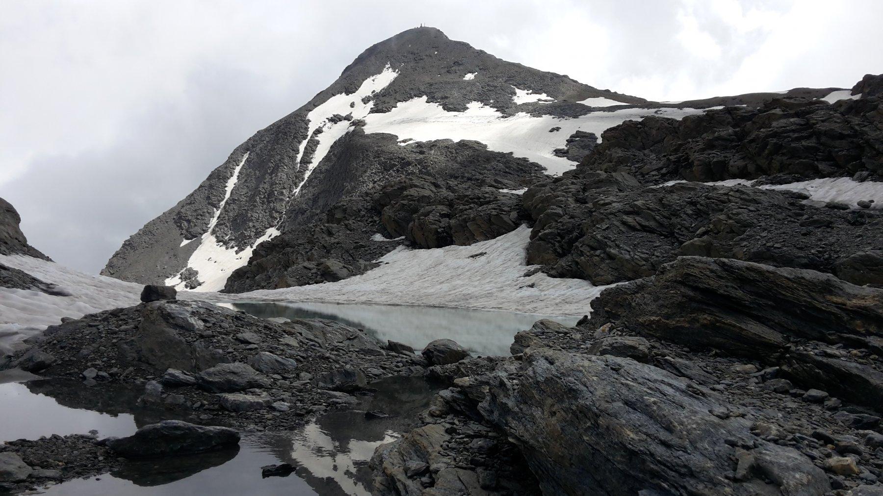 il Rocciamelone dal ghiacciaio