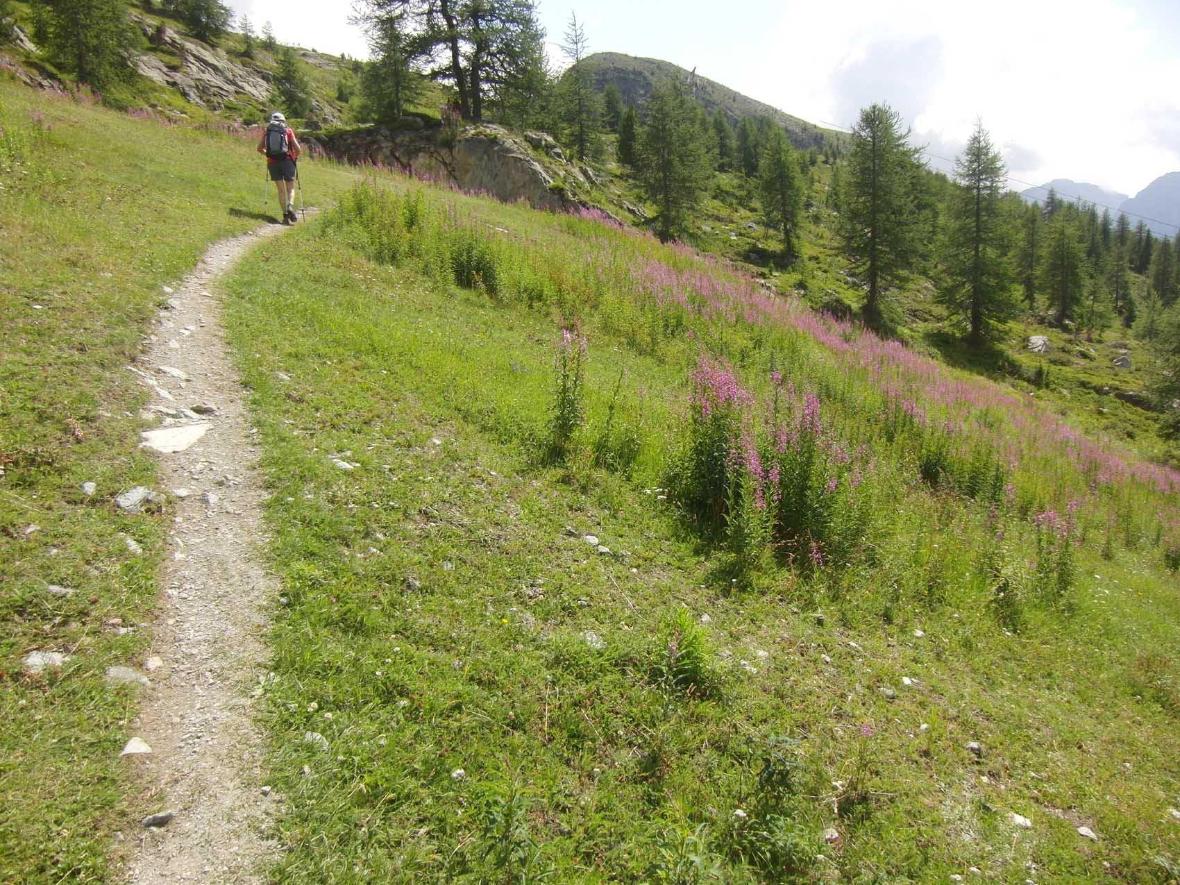 Verso il Lago Ciarcerio