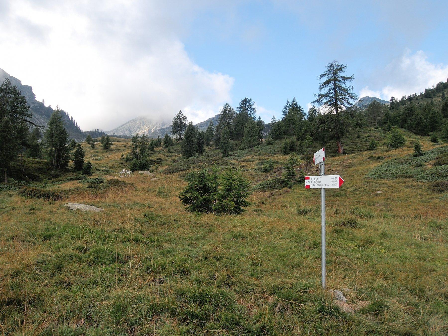 Sentiero tra Alpe Galeria e Alpe Soglio