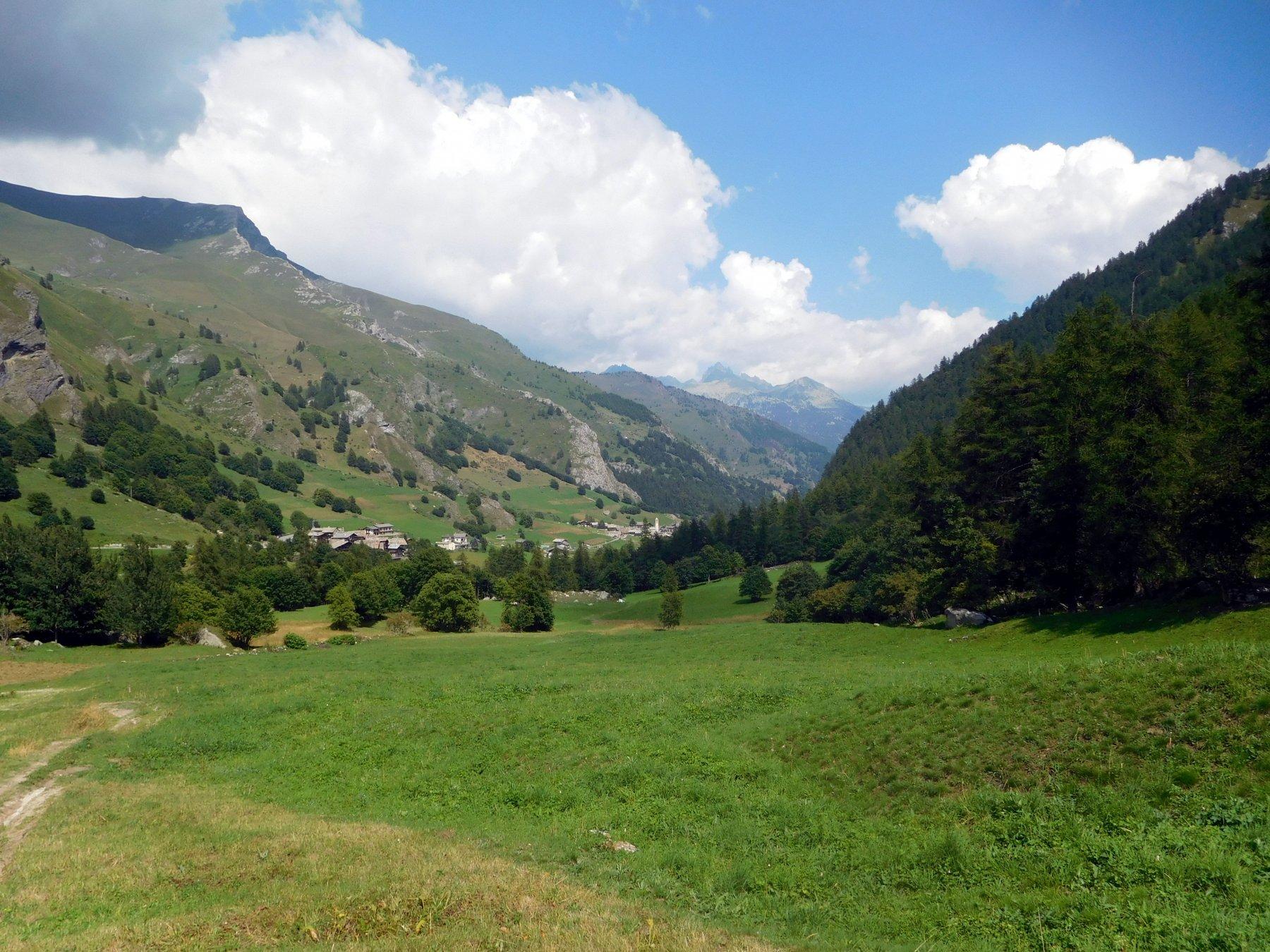 un verdissimo vallone di Bellino