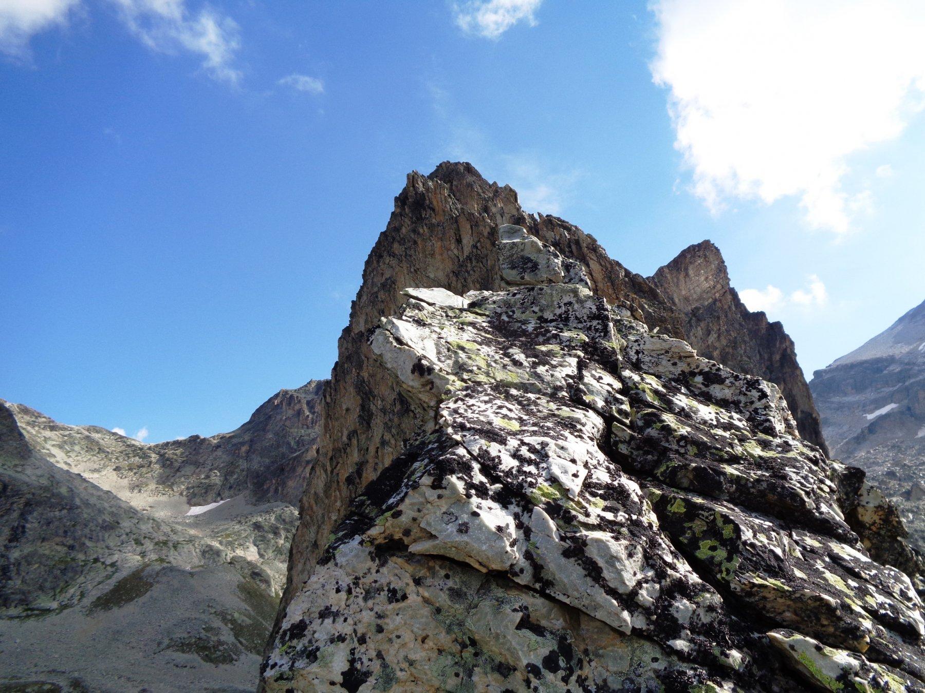 lungo la cresta SW del Bric: l'esposizione non manca