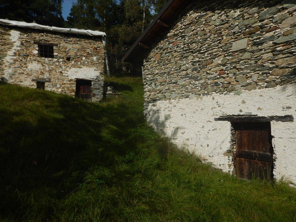 Alpe Grisolo