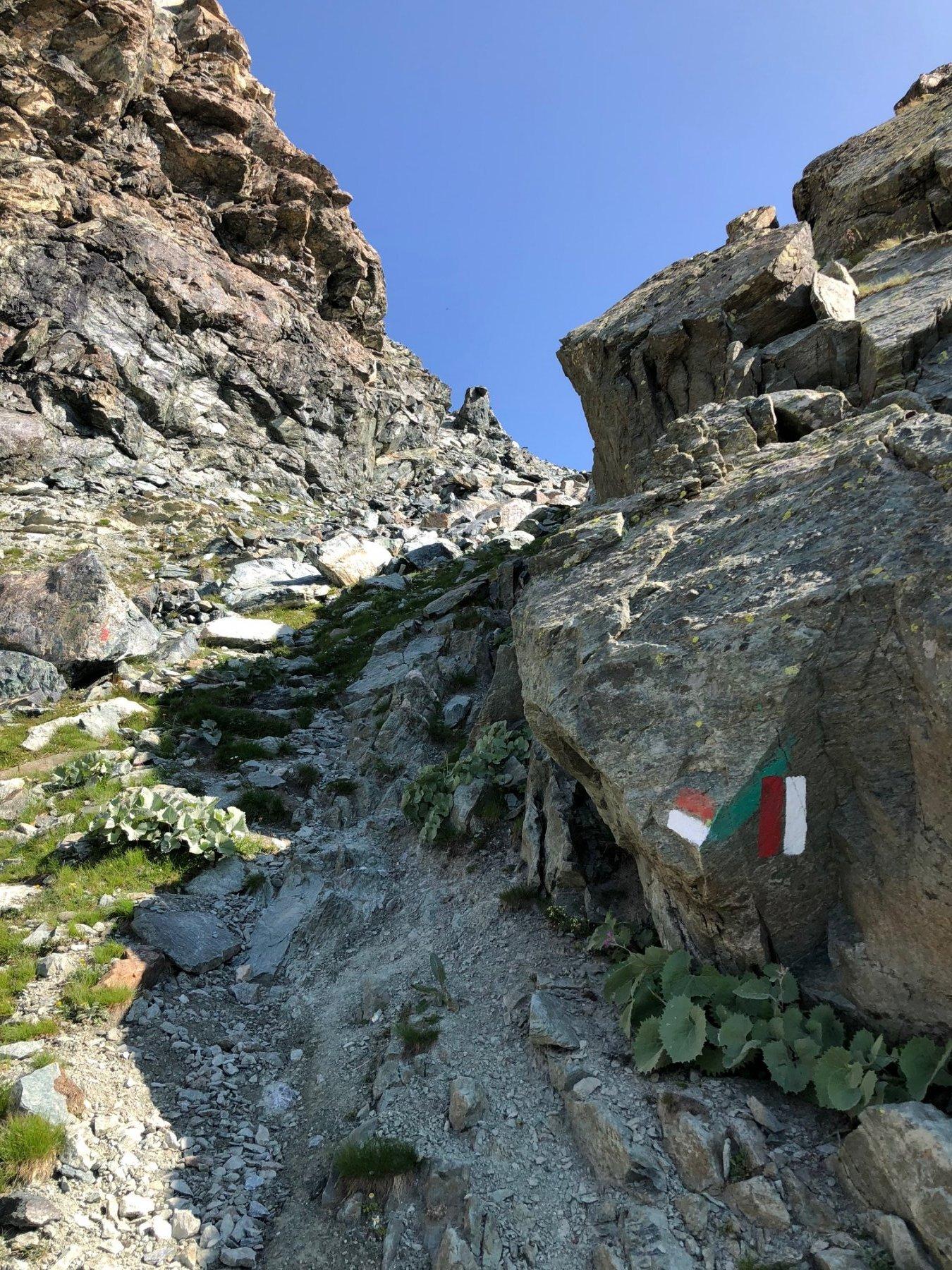 Il ripido sentiero che sale al Passe del Seillerino