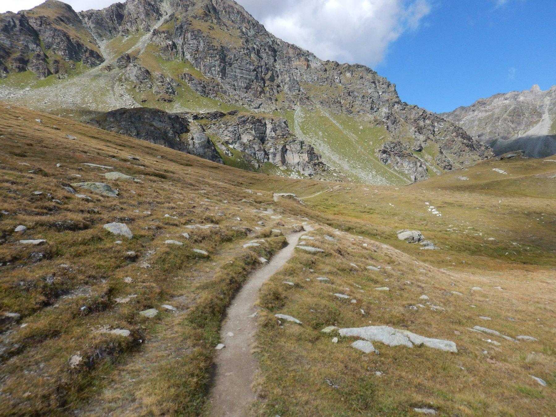 il sentiero dopo il colle Salvè prima di arrivare al bivio per il col Chaleby