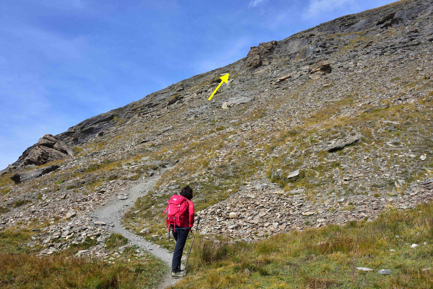 La prima fascia rocciosa sopra il Plan de la Casette.