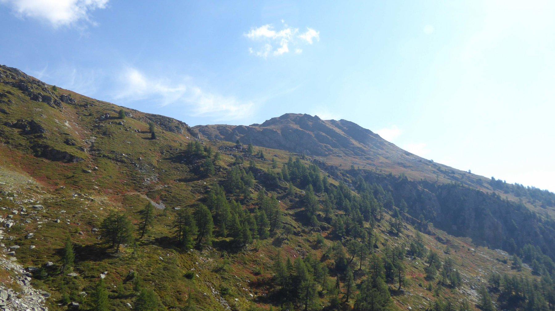 Monte Palietta  2476 m.