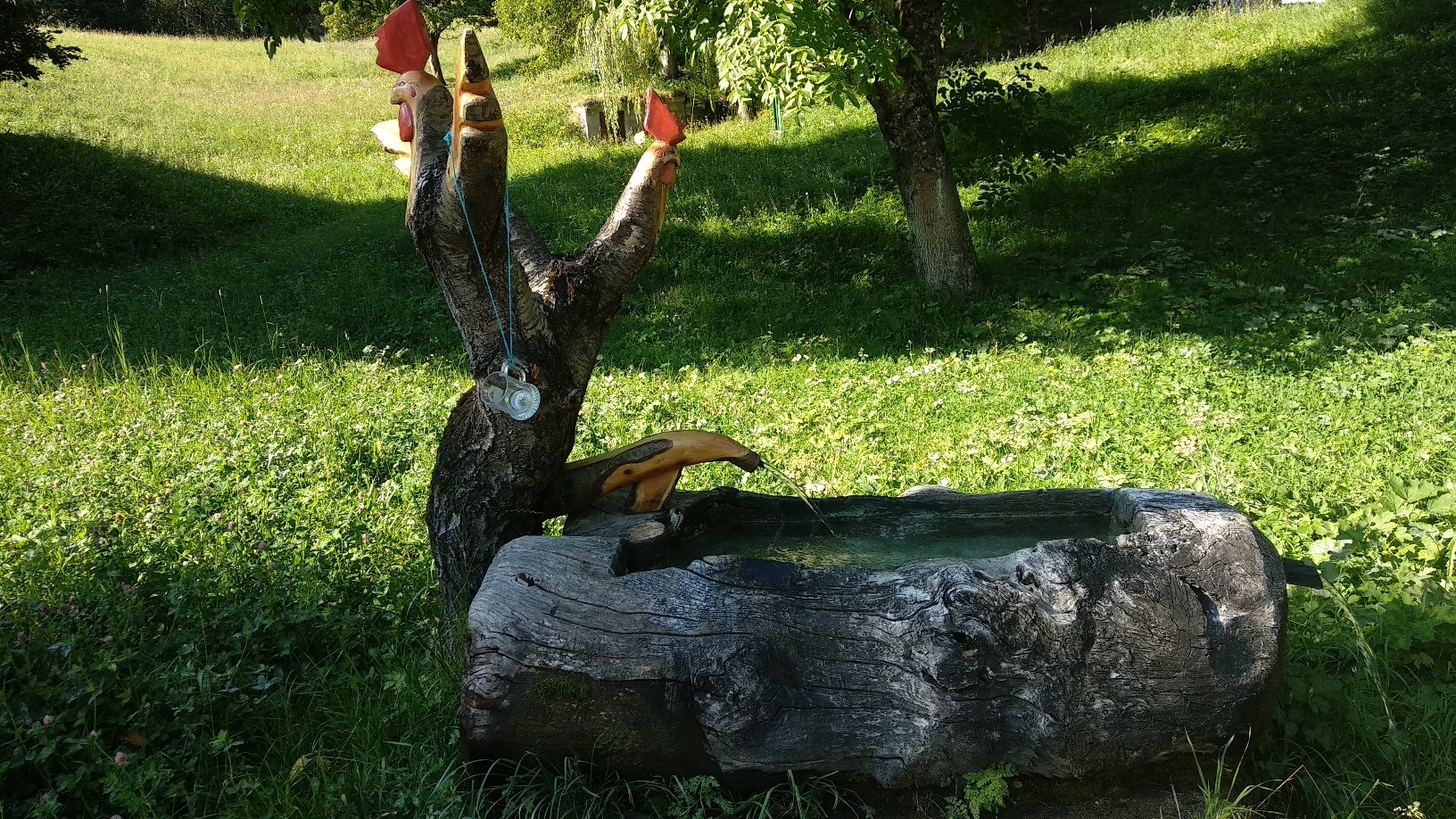 fontana nel vallone del Pieiller