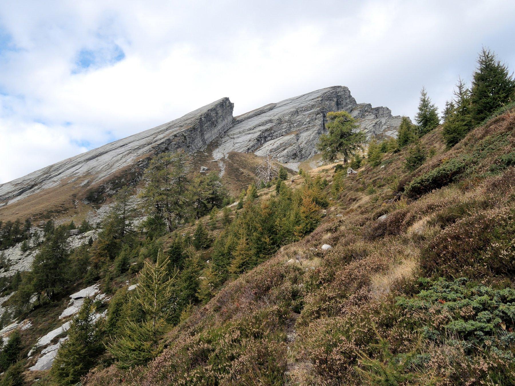 Dall'Alpe i Motti verso l'attacco del canalone