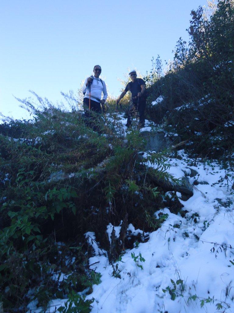 Neve scendendo al Gias Pravinè