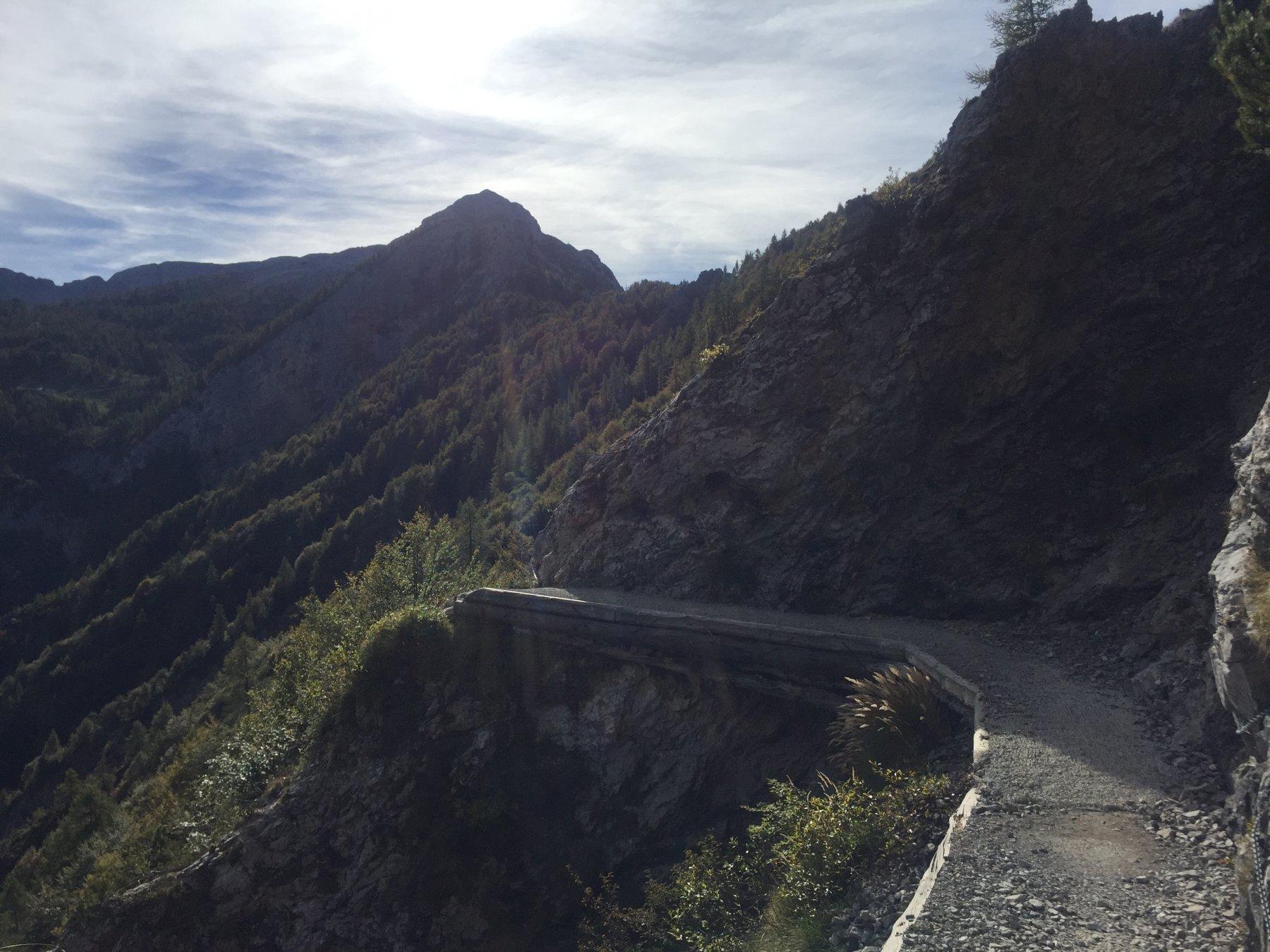 sentiero verso il Bogani