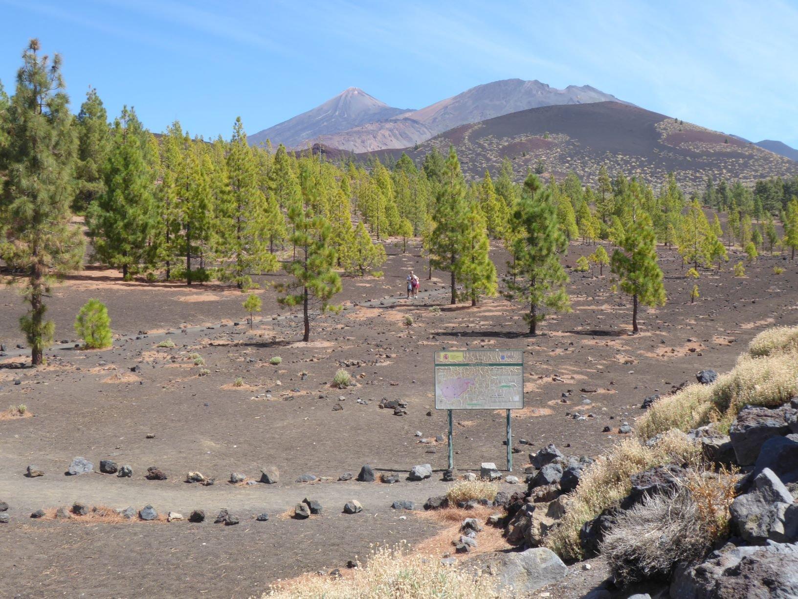 inizio del parco  il Teide sullo sfondo