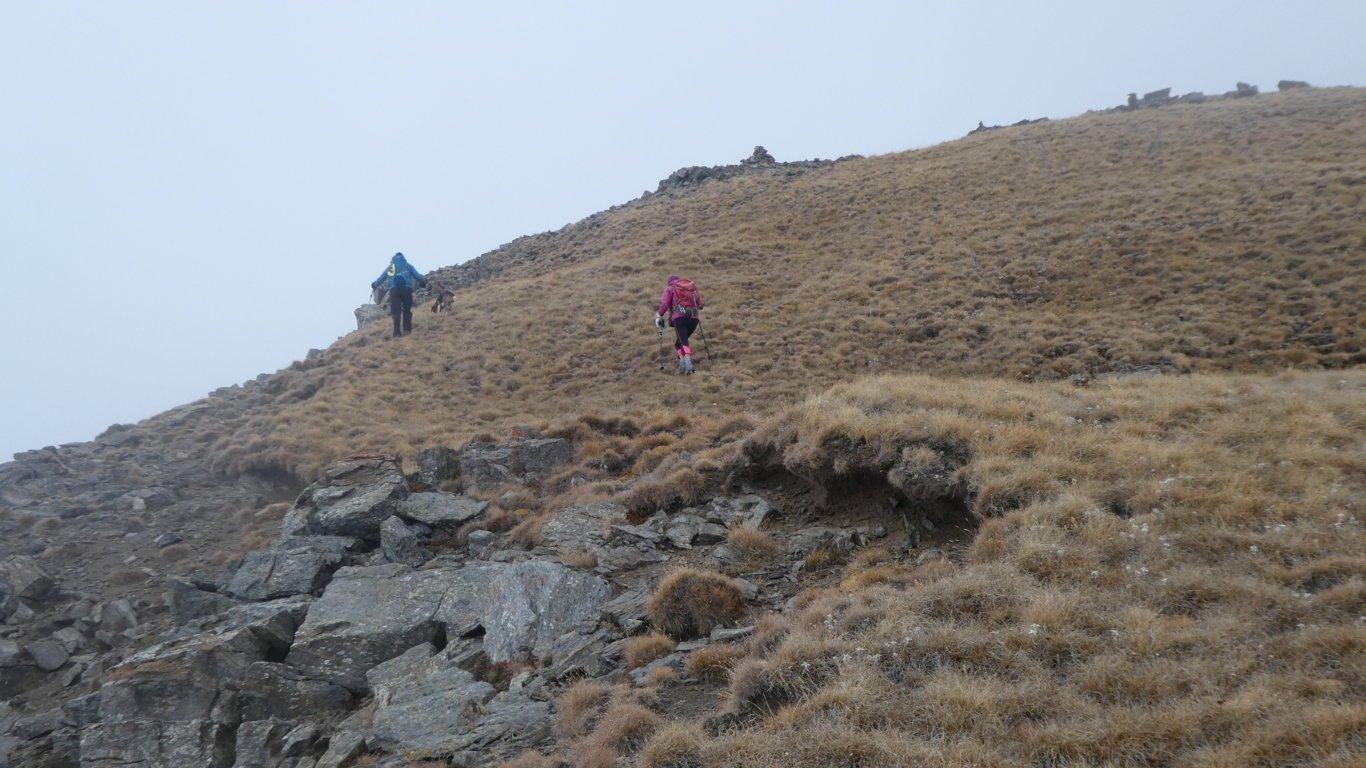 ultima rampa erbosa prima di raggiungere la quota 2978 m della Punta di Arpisson