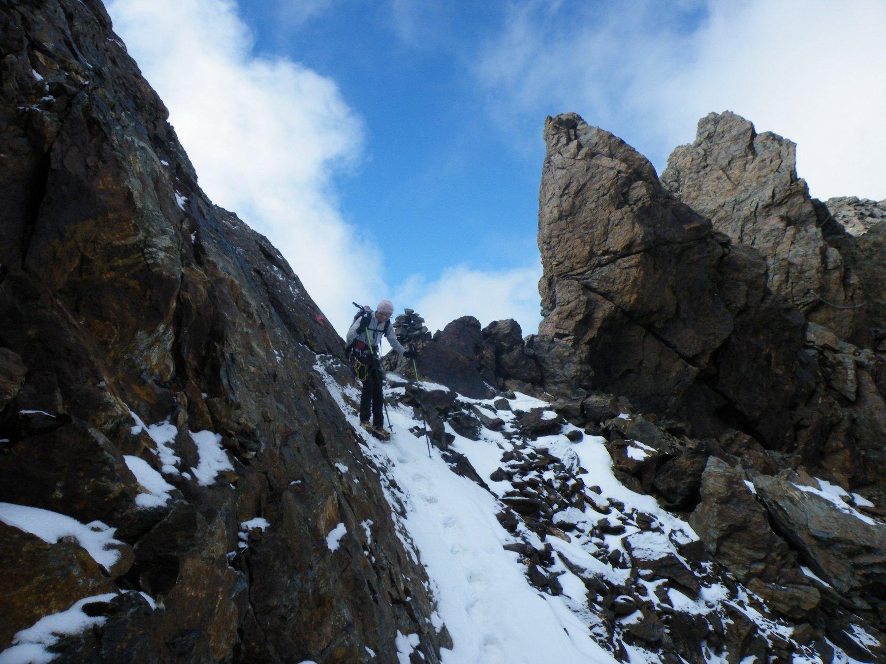 Sternai (Cima) o Hintere Eggenspitze dalla Val d'Ultimo 2018-10-13
