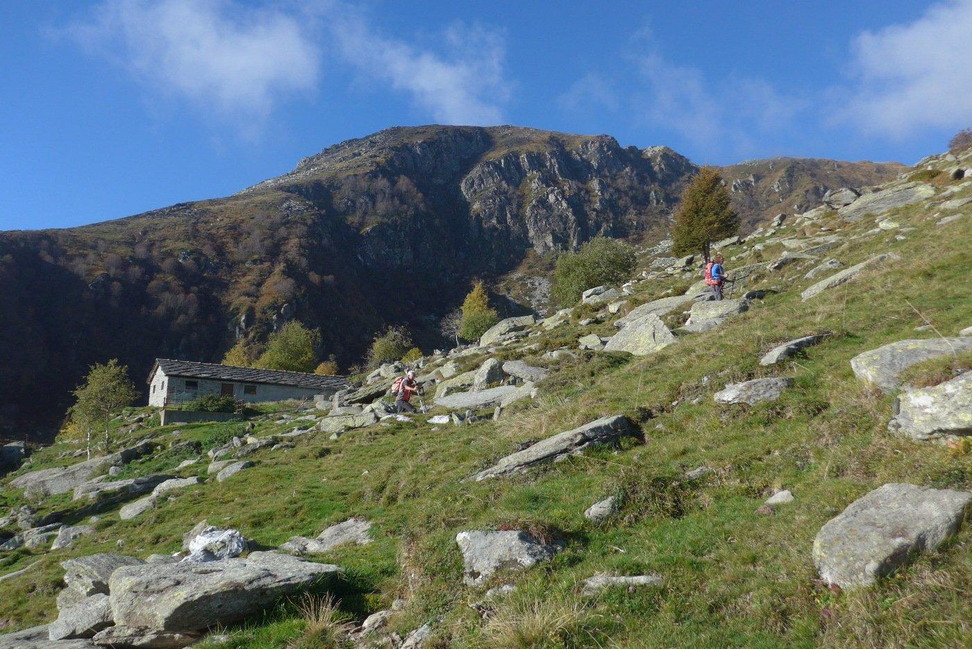 All'Alpe Colletto