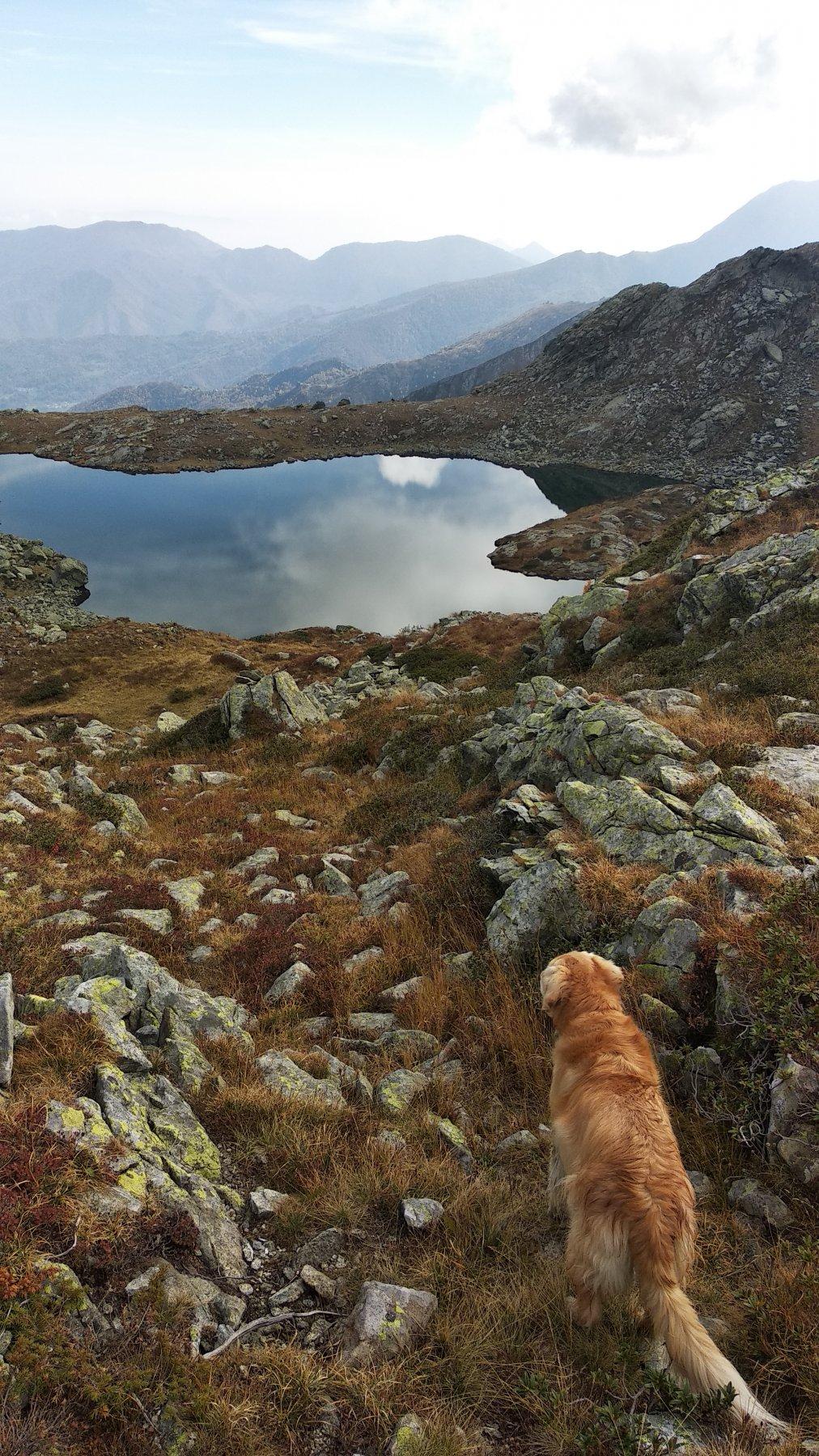 Lago di Viana scendendo dal Pane'