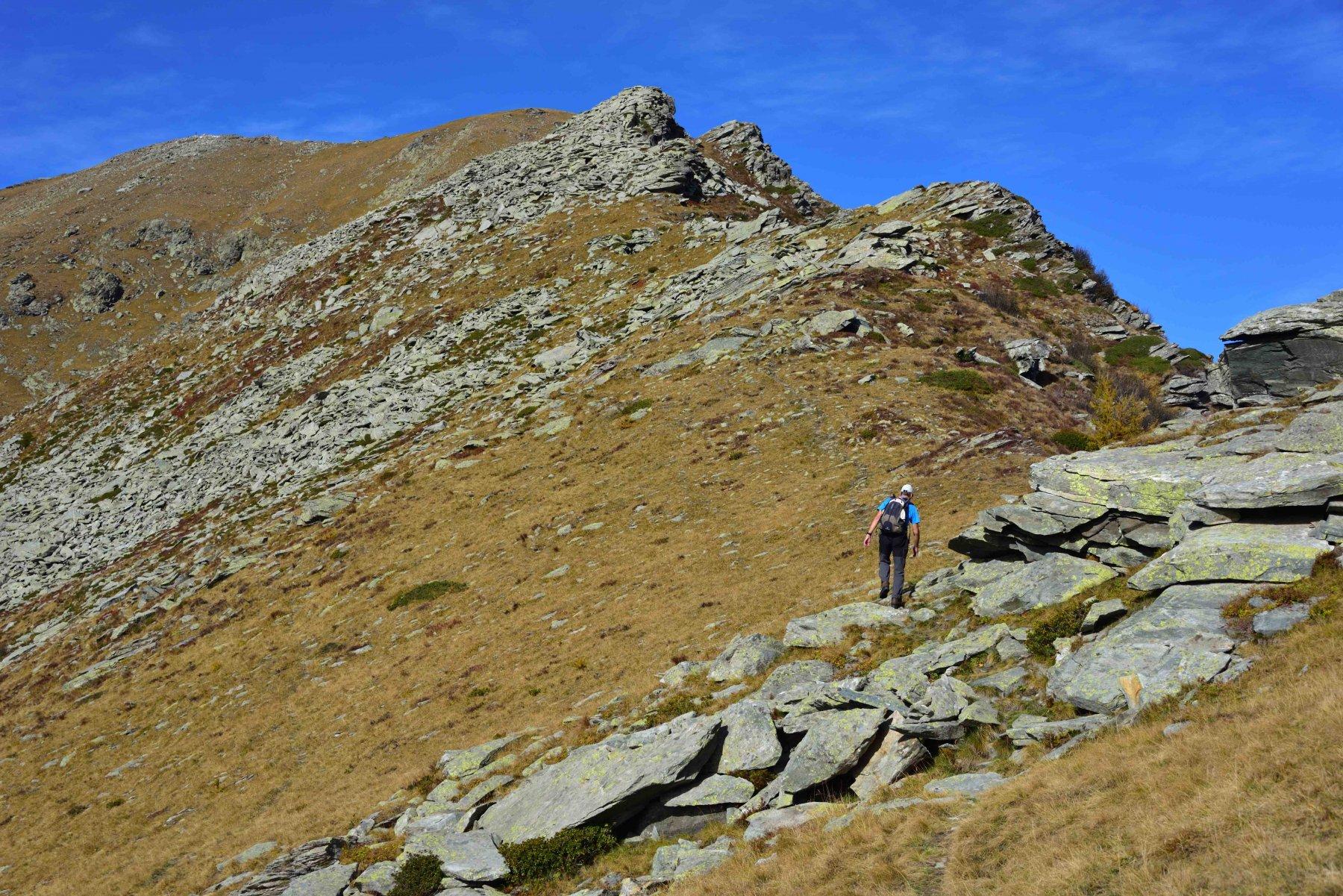 Risalendo la cresta SE del Frioland.