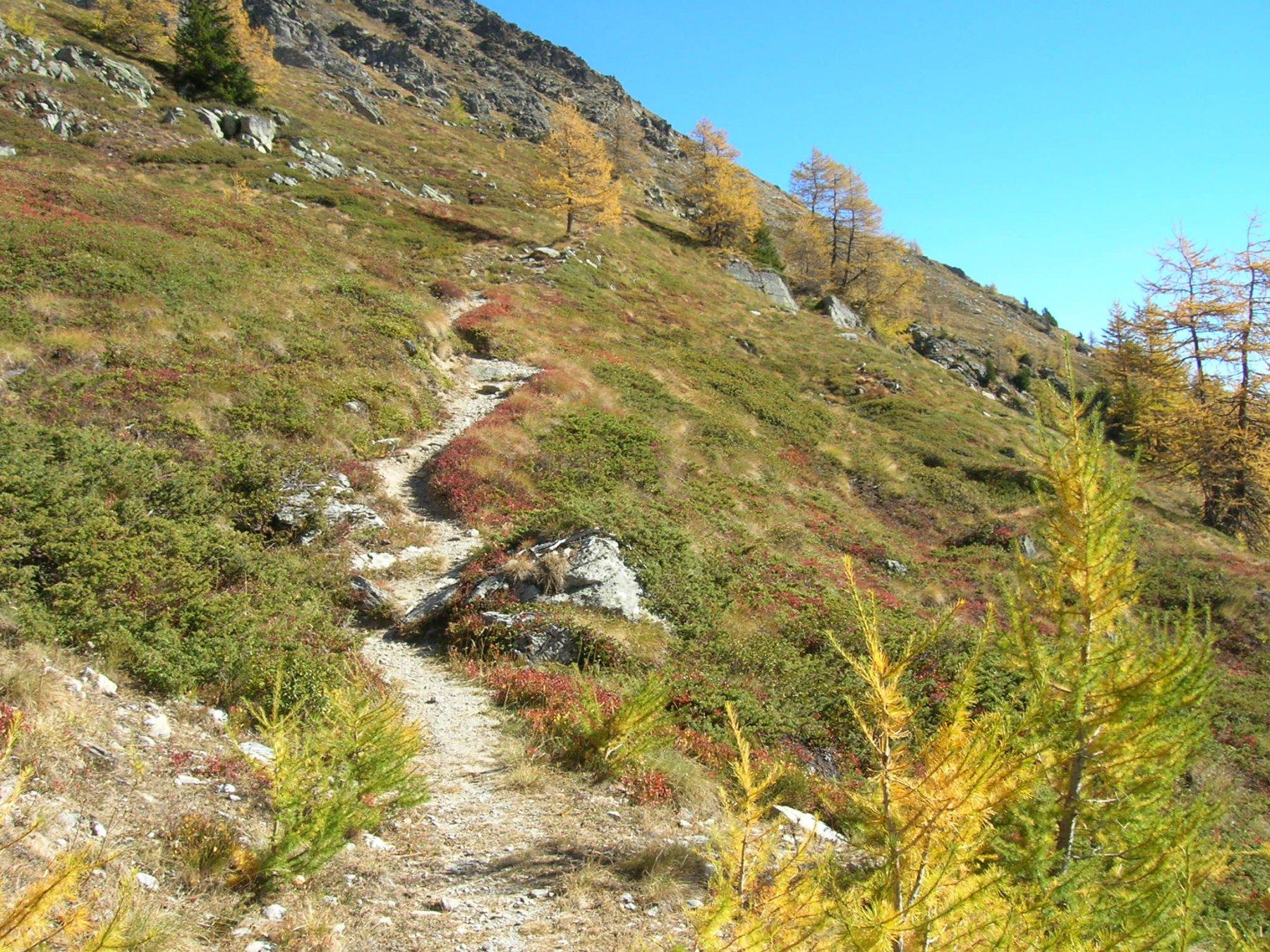 Paglietta (Monte) da Saint Oyen 2018-10-25
