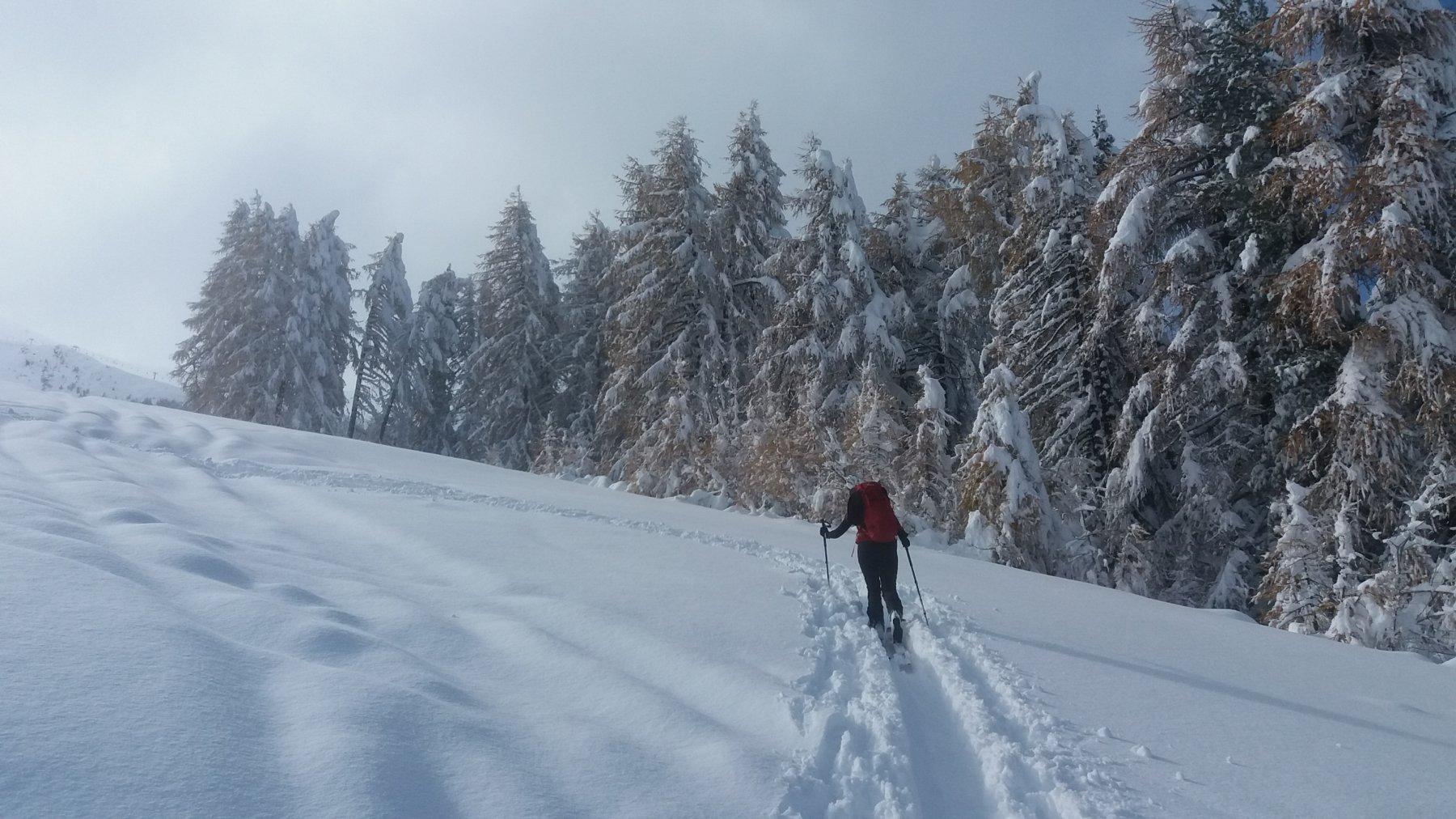 Neve e colori ancora autunnali