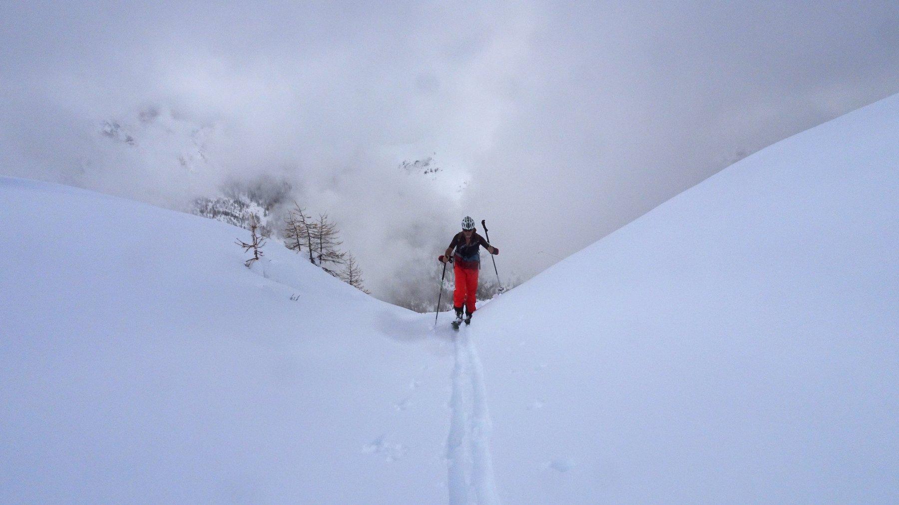 Neve abbondante