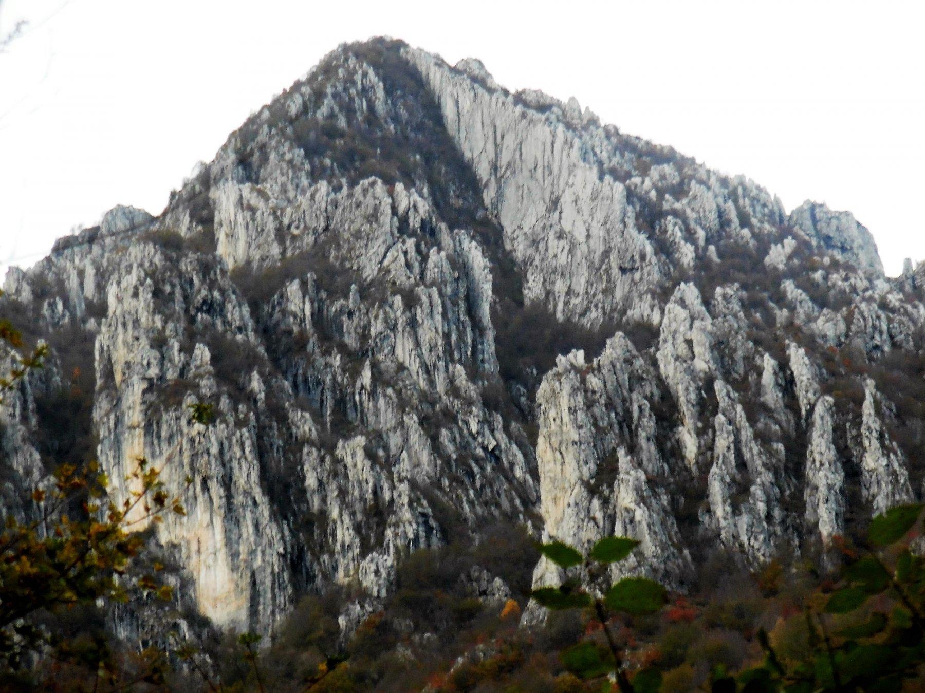 La cresta OSA al centro