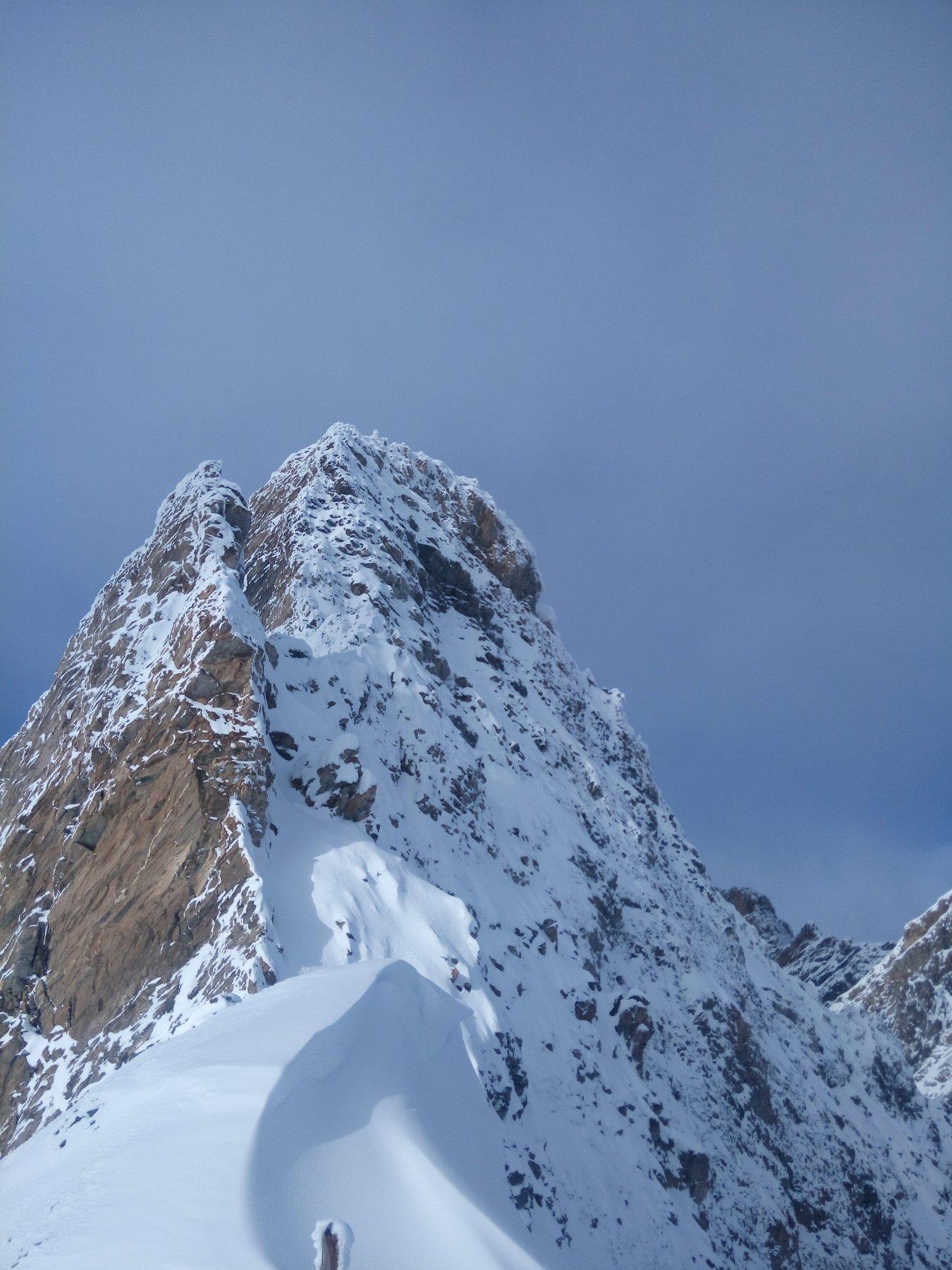 Pic d'asti patagonico