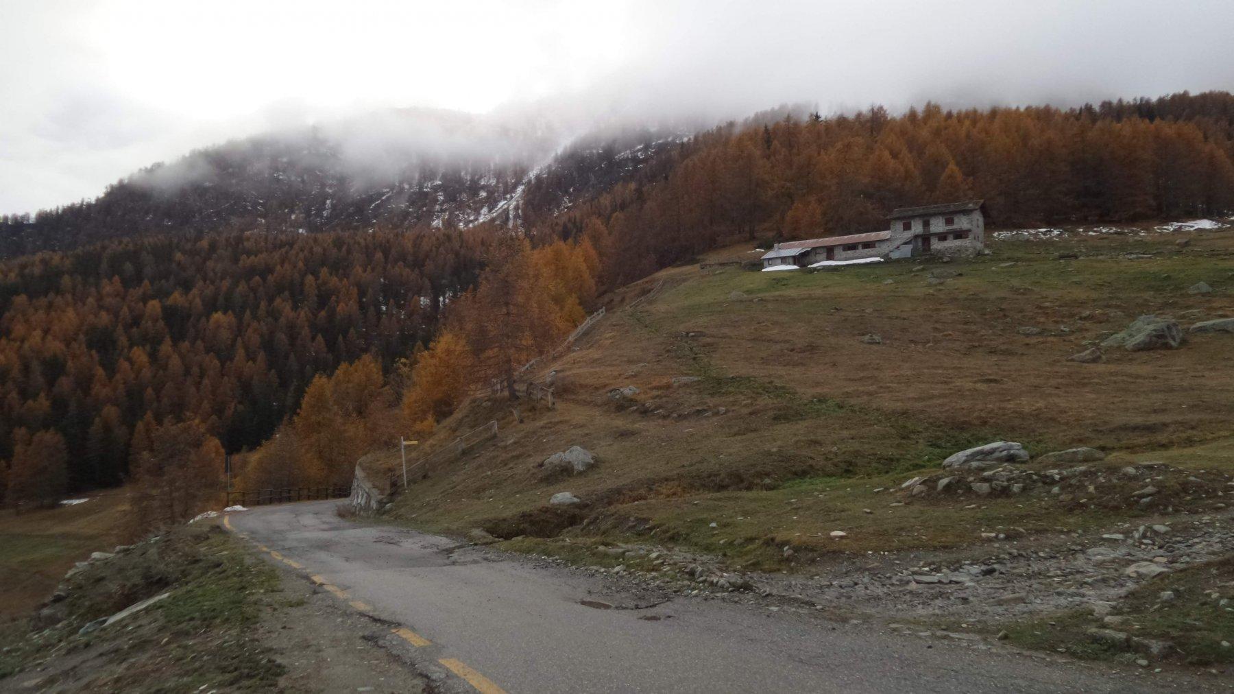 il punto dove inizia il sentiero con segnavia 11 a Camptornè