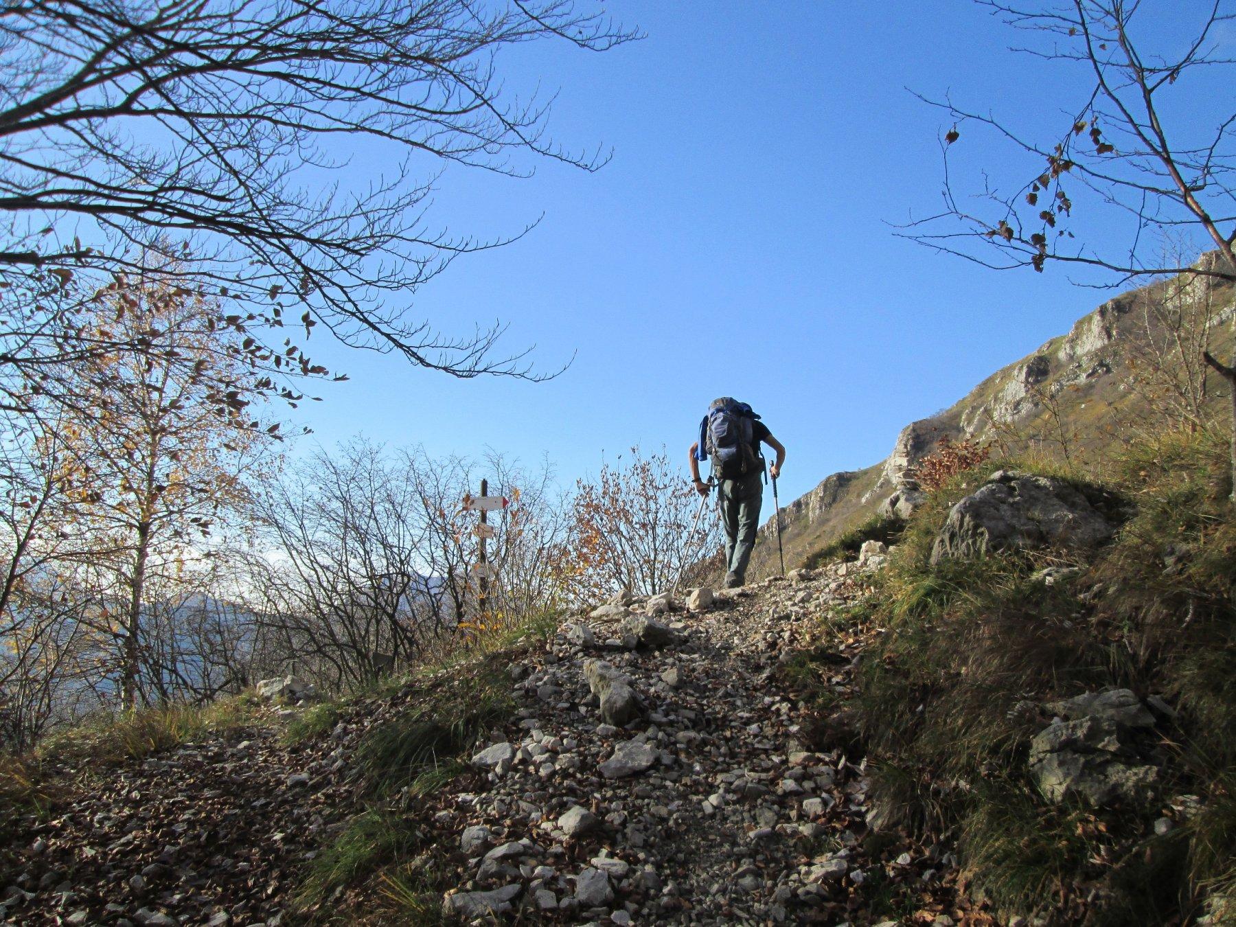 Alpe Pesciola superiore