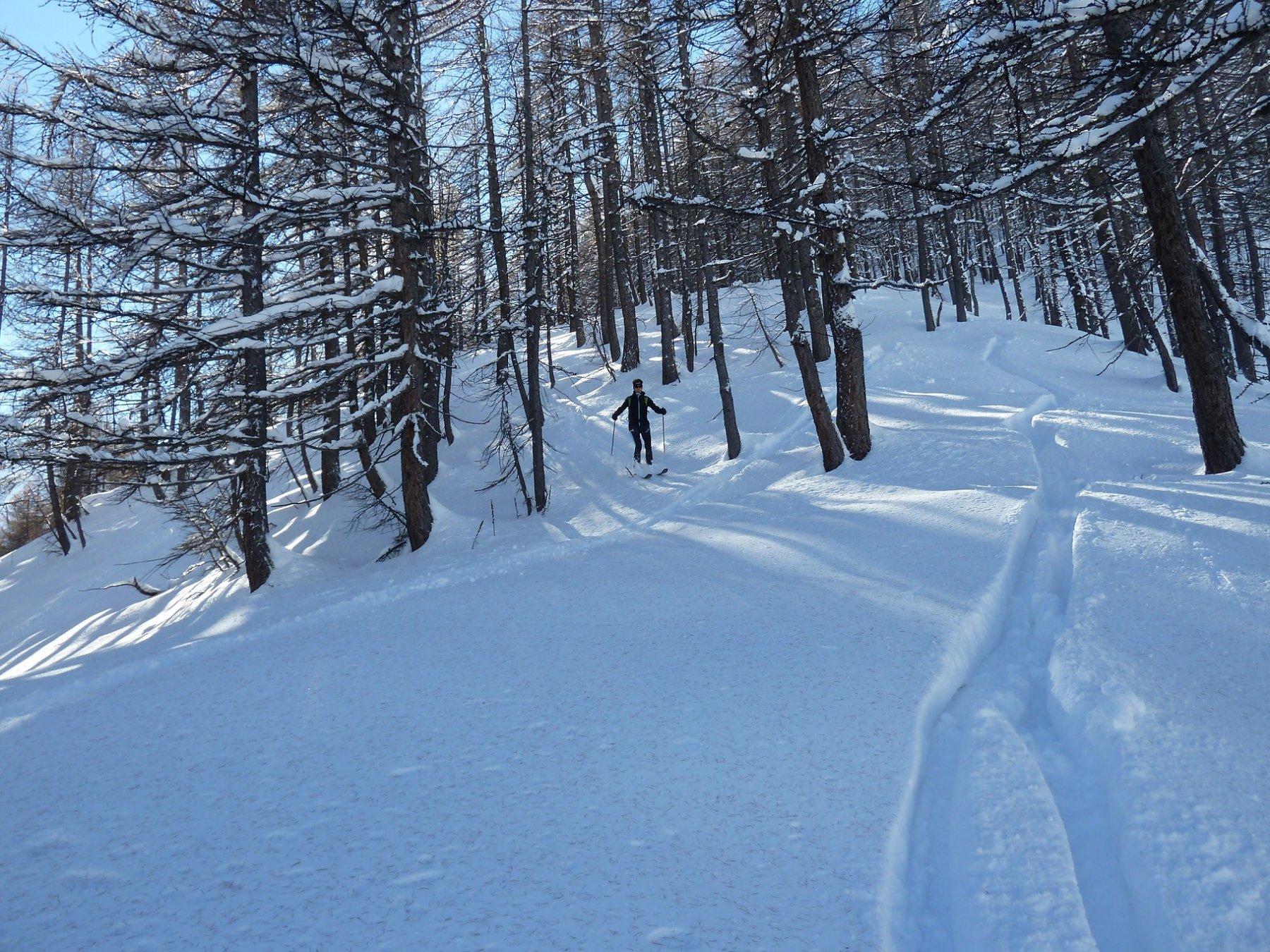 nel bosco tanta neve ma si curva bene
