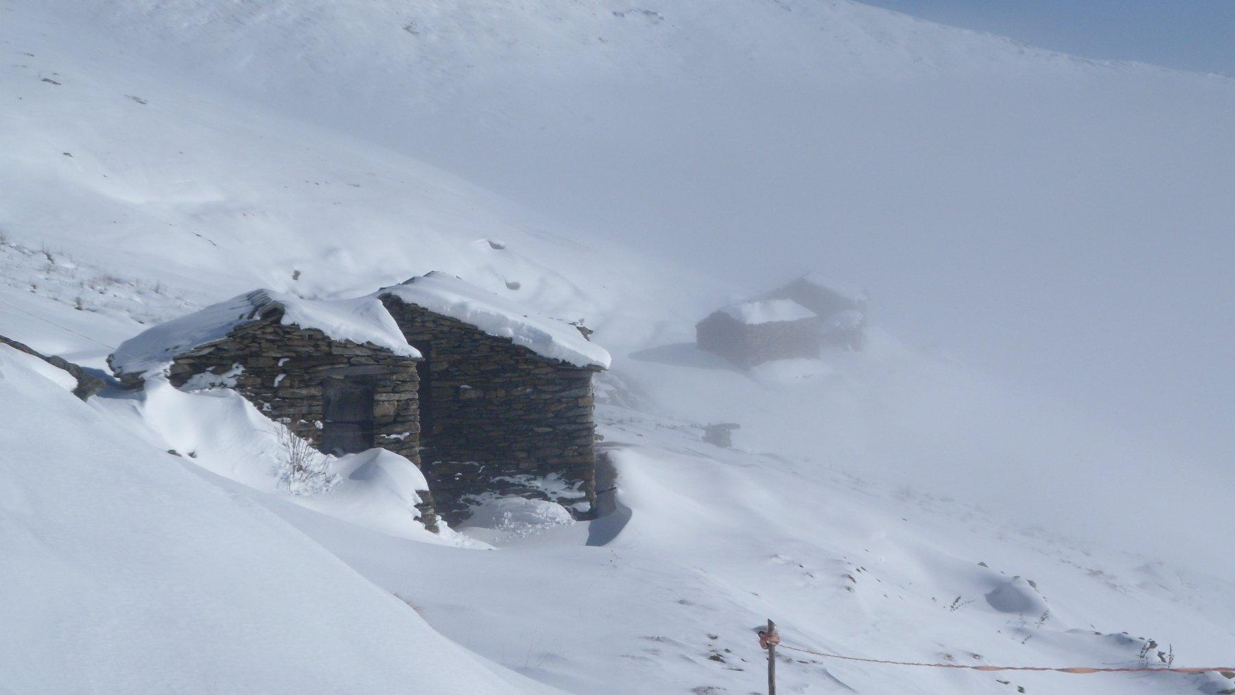 Uscendo dalla neve a poco sotto il rifugio