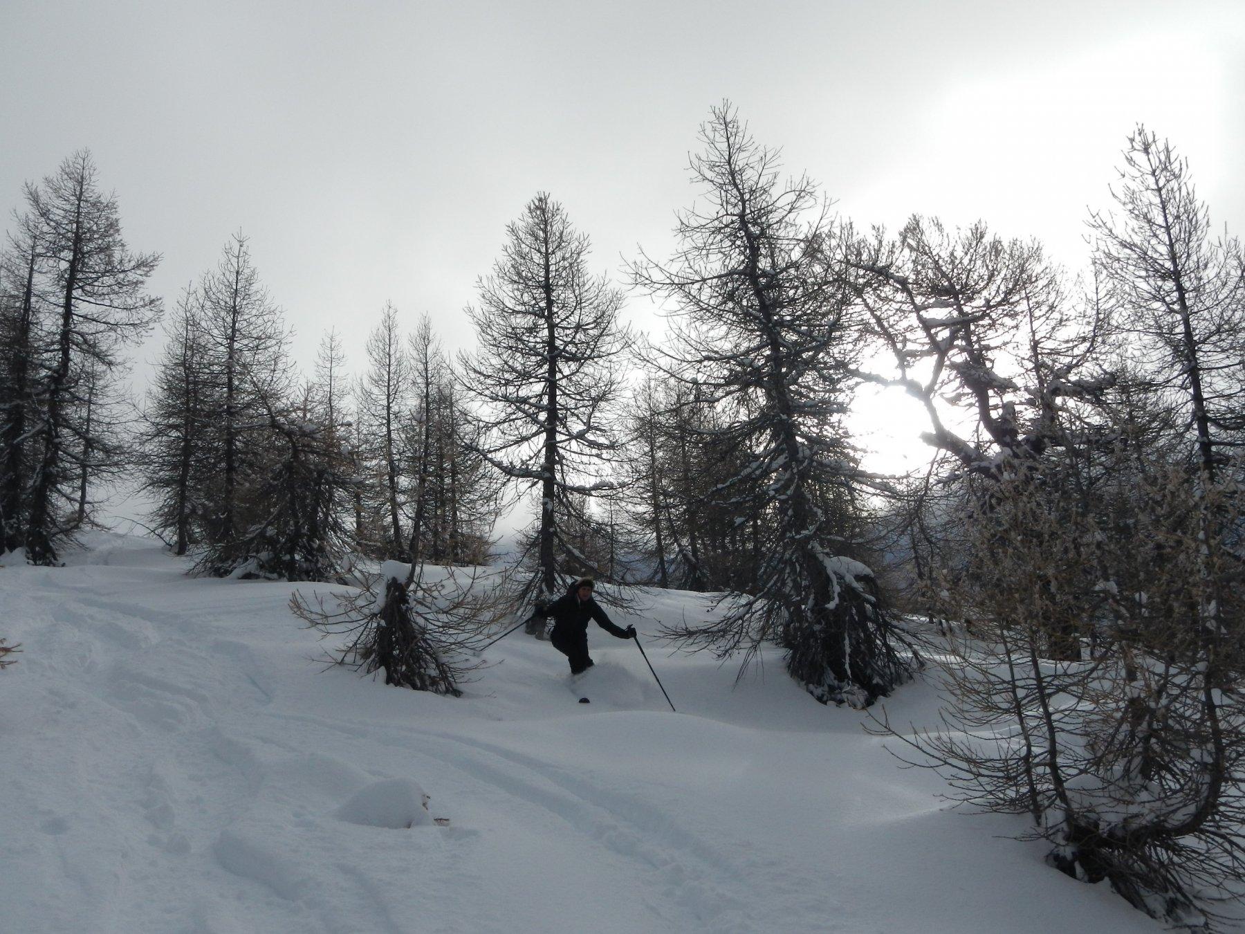 discesa su neve divertente....