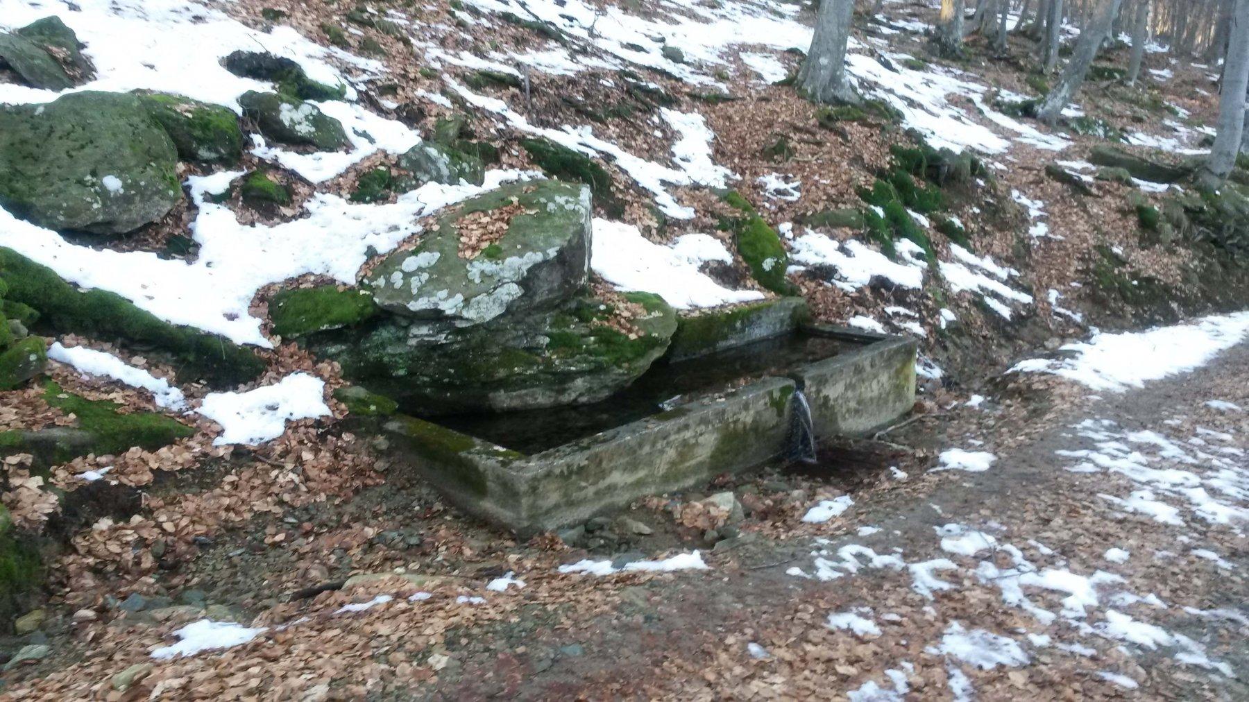 Fontana prima della Muanda