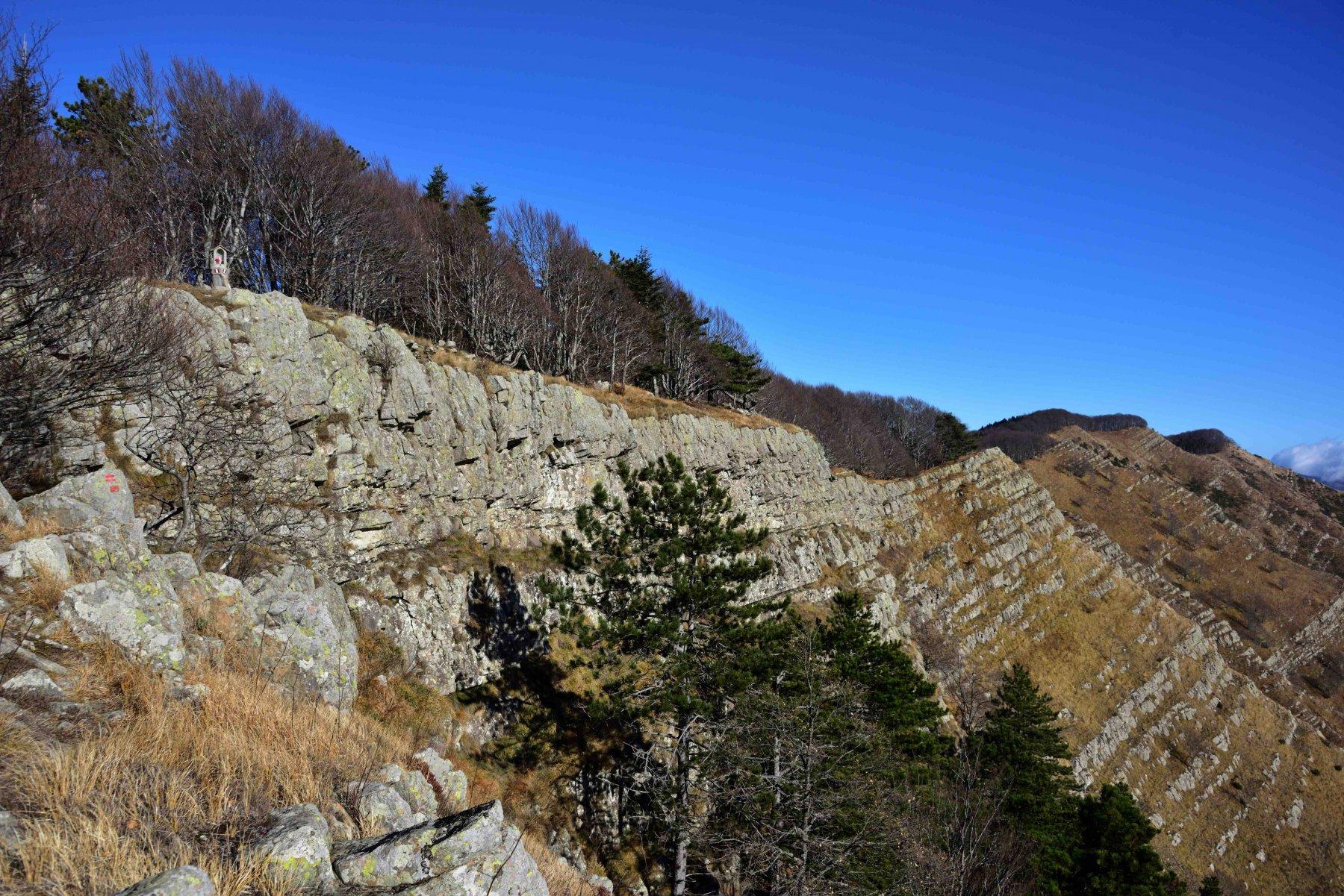 La cresta sommitale poco sotto la vetta del M.Zatta di Ponente.