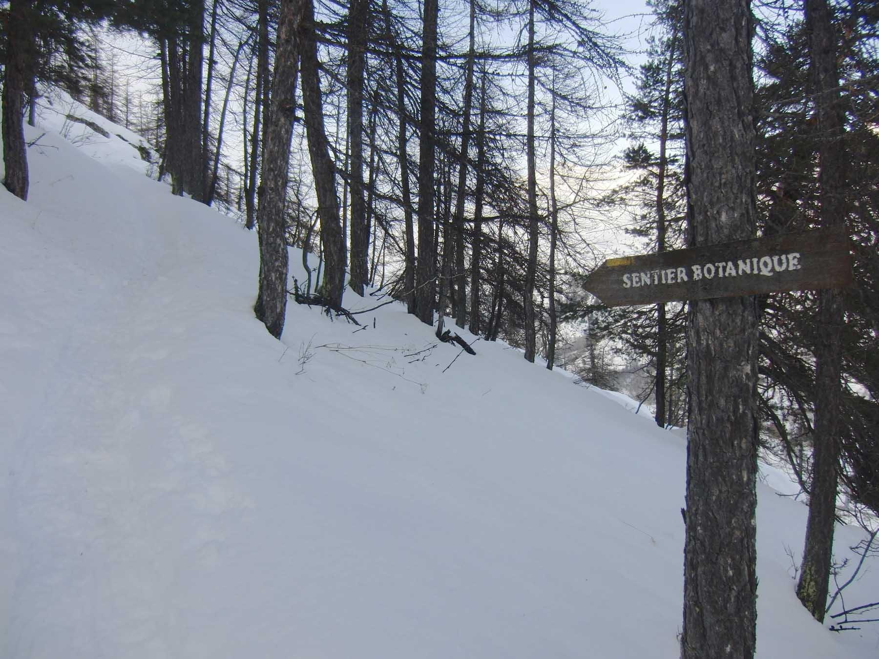 Sentier Botanique