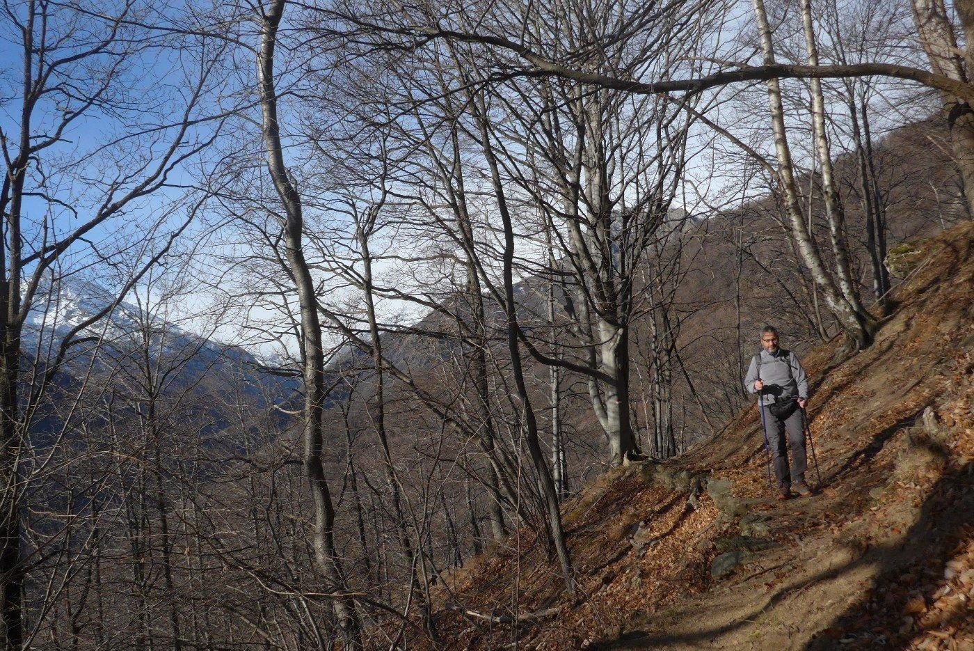 Sul sentiero nel bosco prima della terza scalinata