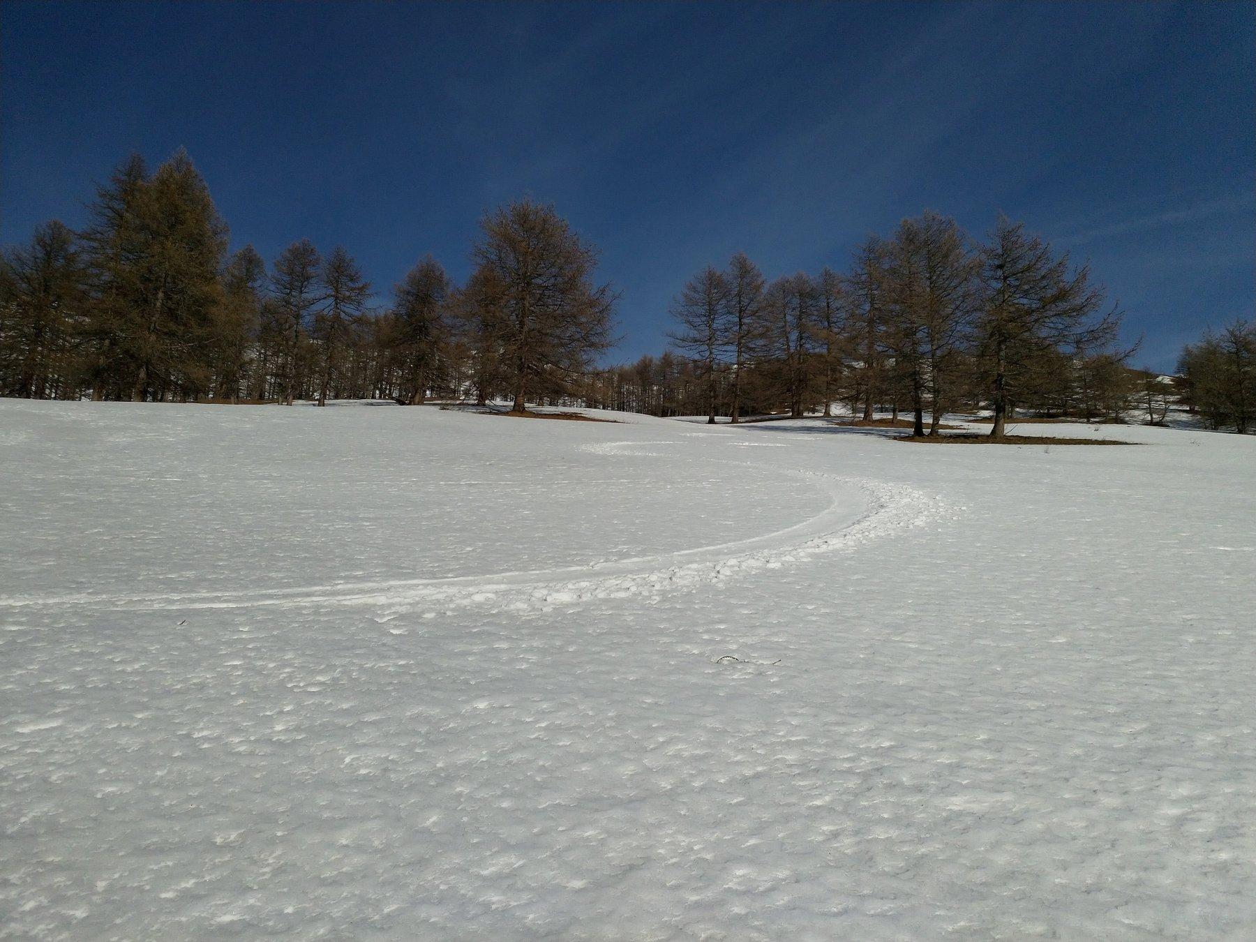 I meravigliosi prati sotto l'Alpe d. Stelle in condizioni perfette