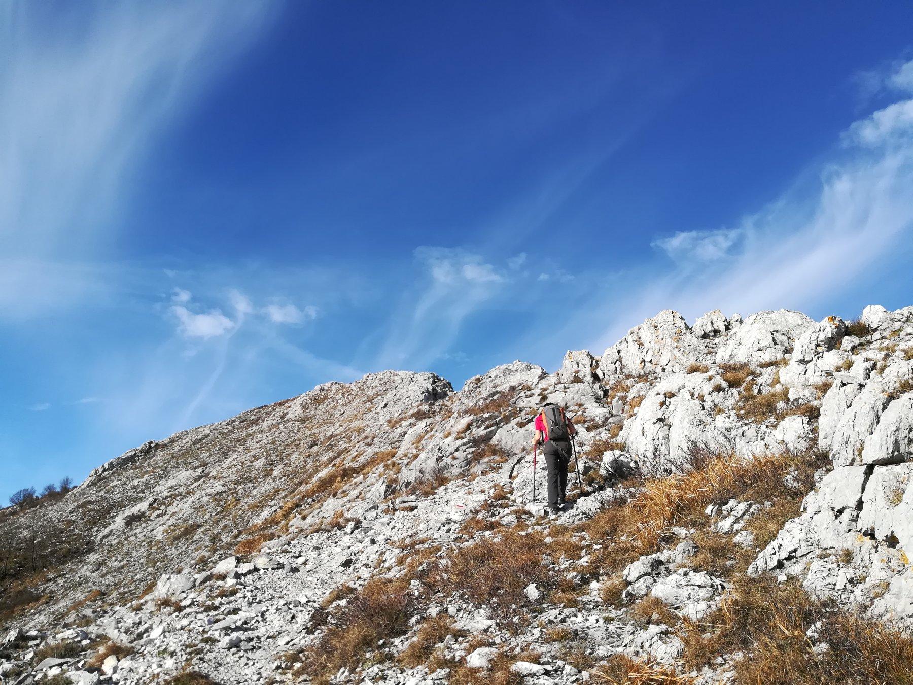 Salita dal sentiero di cresta