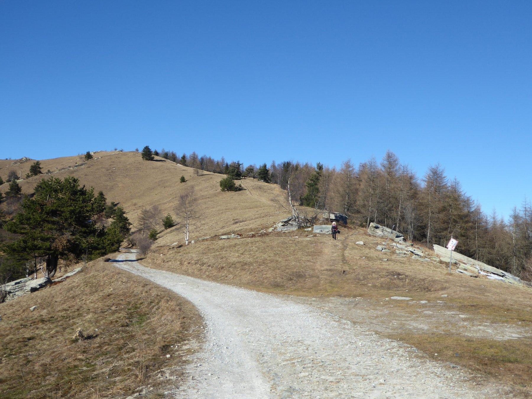 l'ampio colle della Ciabra, da cui si stacca il sentiero che percorre la dorsale