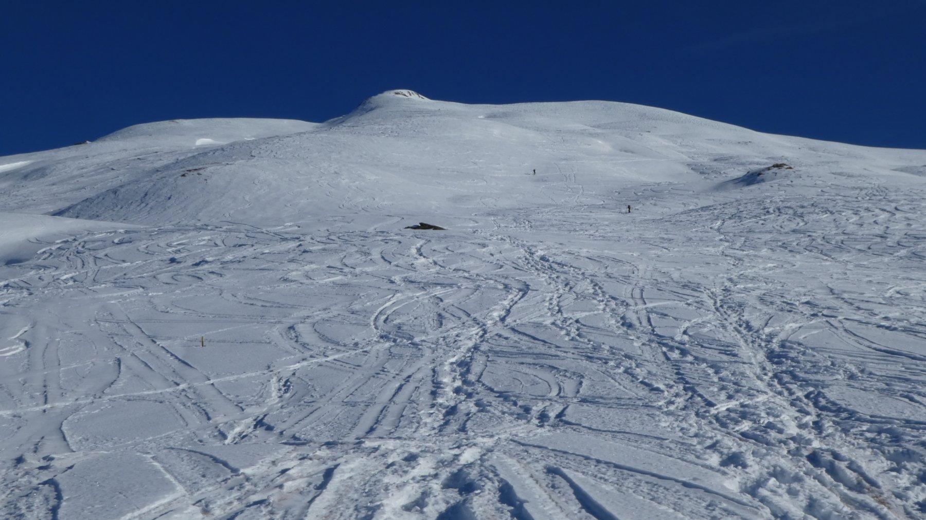 i pendii della parte alta del versante Ovest della Gardiole de l'Alp