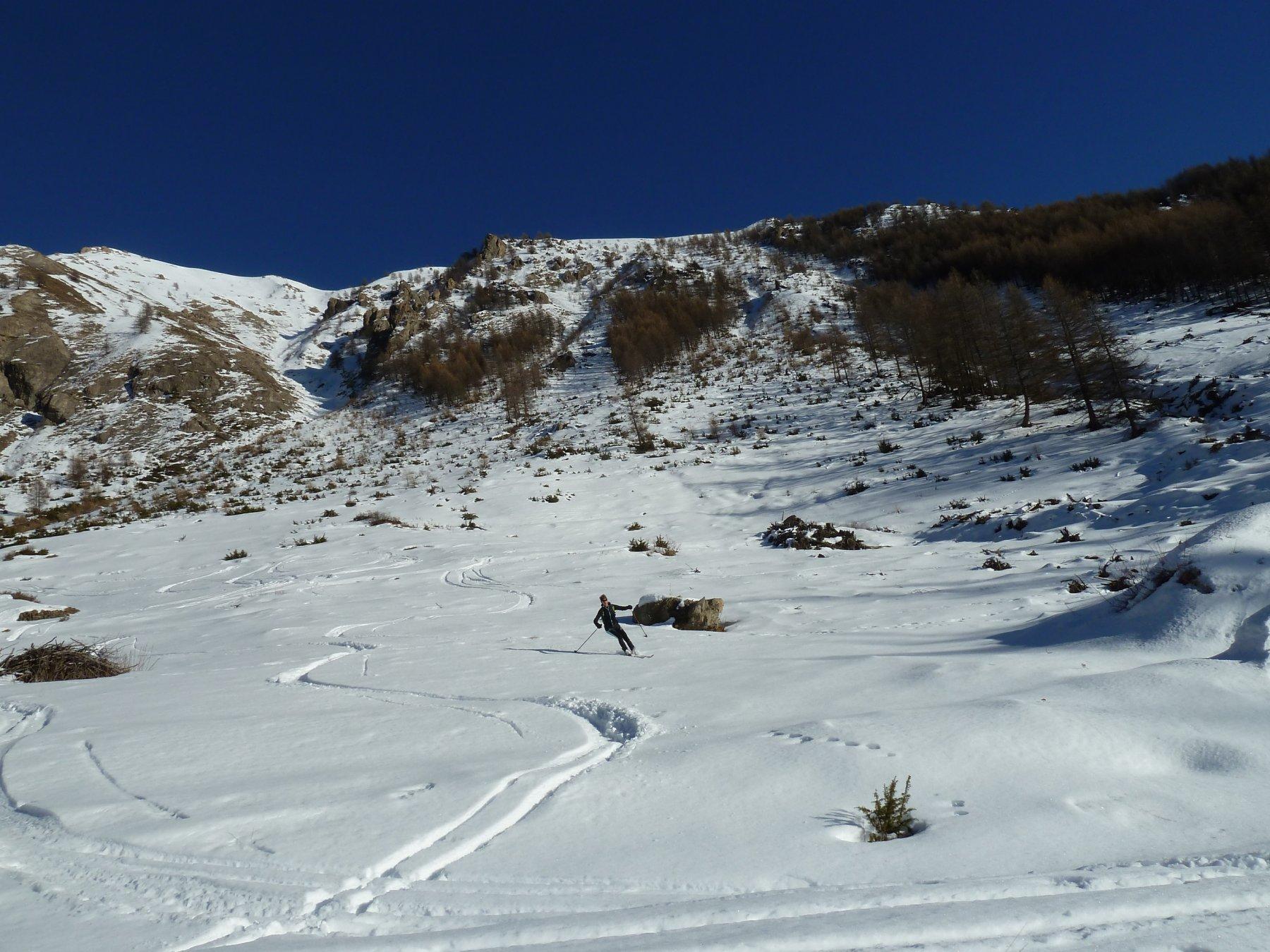 radure nella parte bassa sotto il pendio Ovest del Roir-Alp