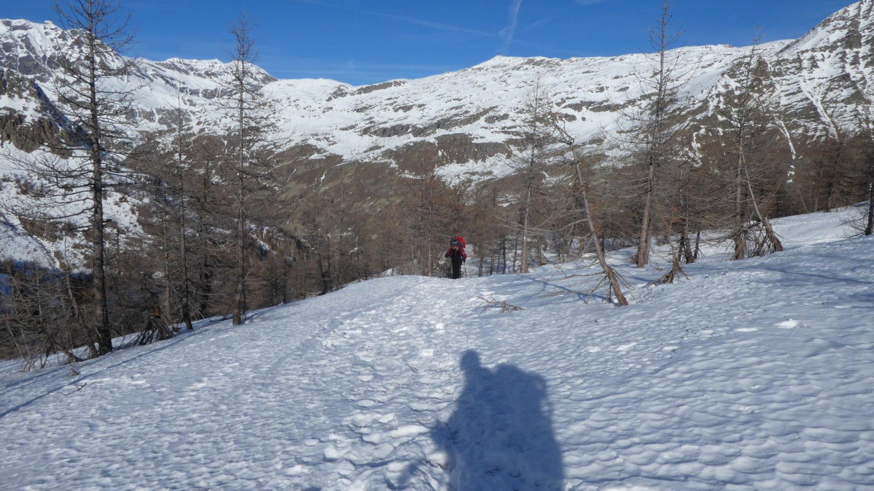 la prima neve in copertura continua a quota 2000 m