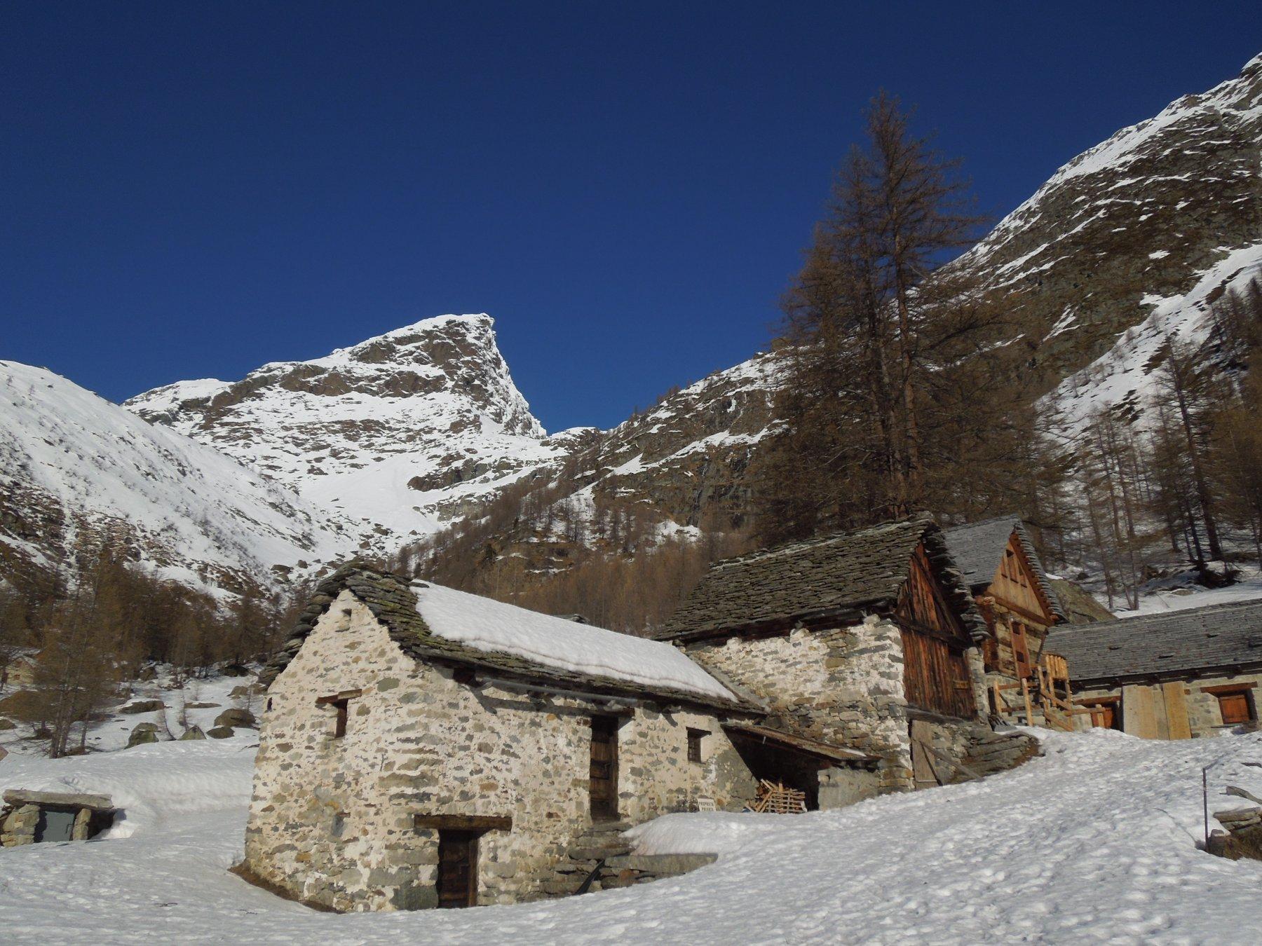 Alpe Campetto