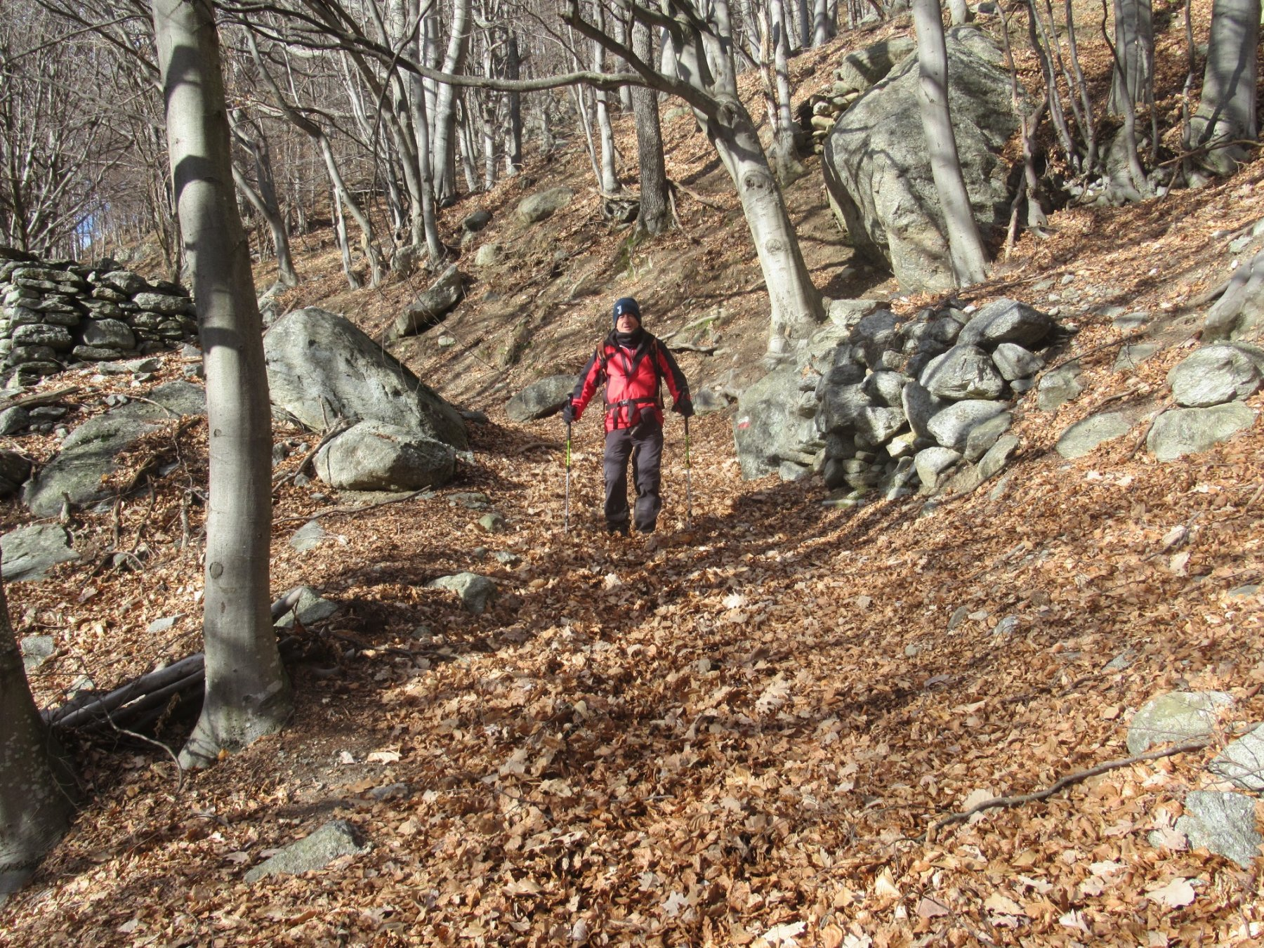 Scendo a Bonzo tra le foglie