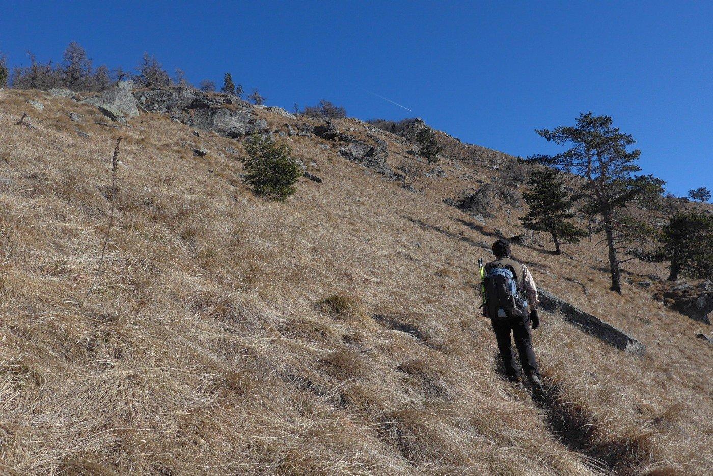 Verso la Rocca
